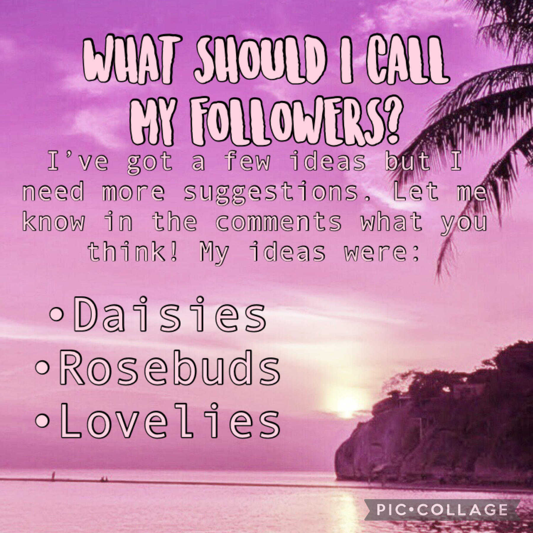 🌹2.18.21🌹  I know all of those ideas aren't great, so I need your input!