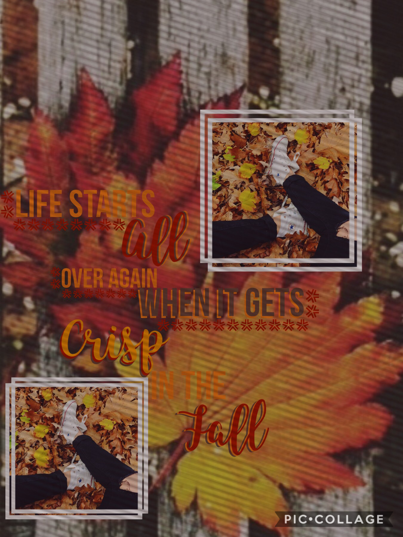{Tappers}  I really like this one:) I hope you guys like this!   THANKS FOR 0.5k!  Have a great day!