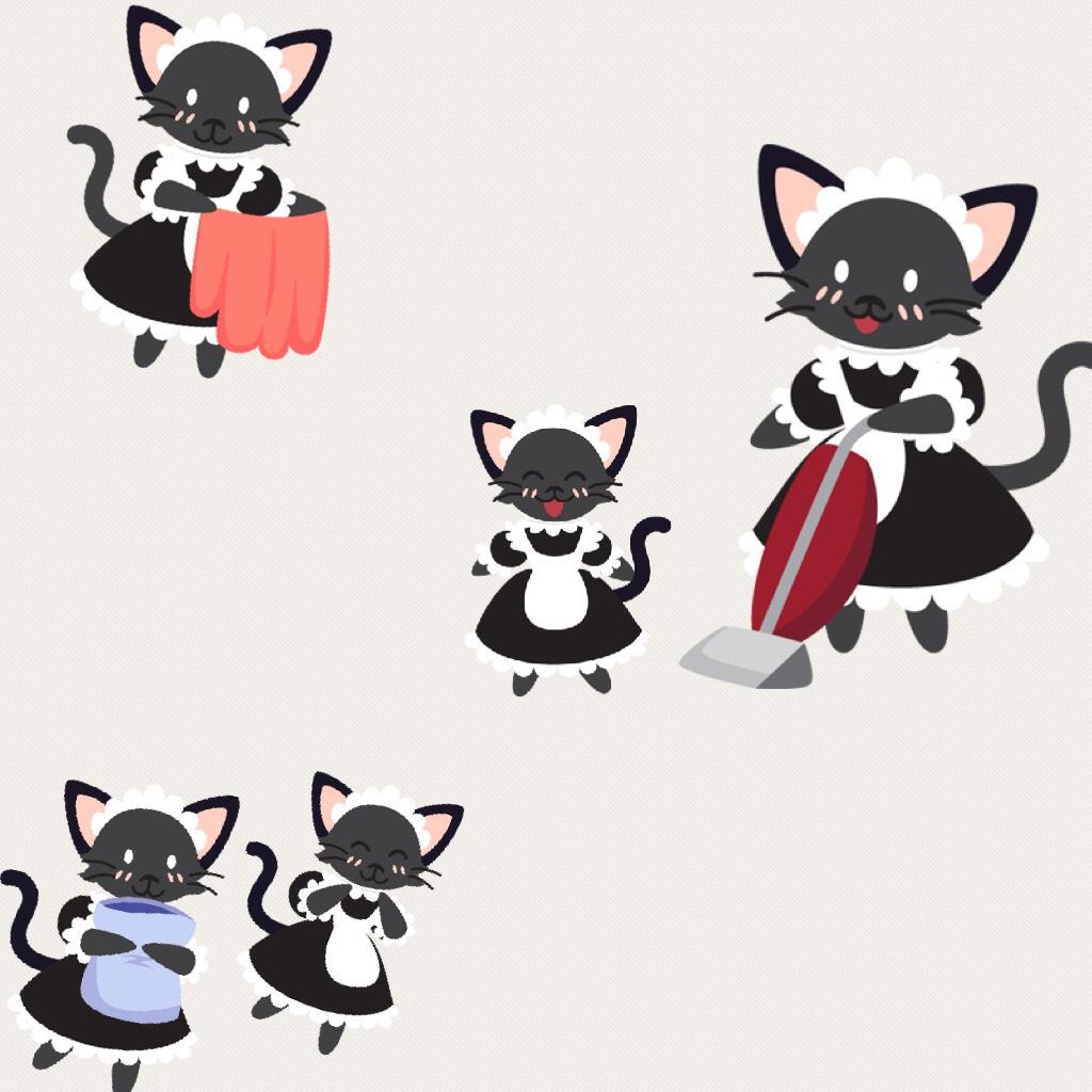 Kitty maids  (Wish I had those) 😄😁