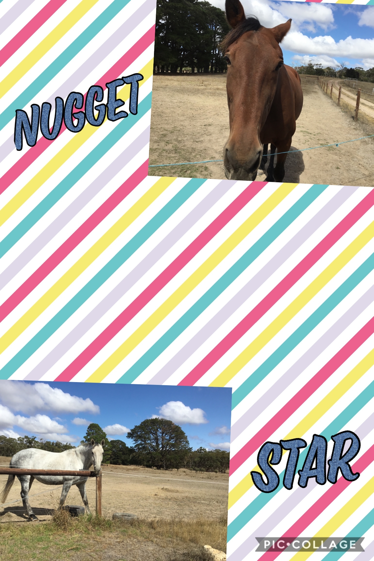 Nugget and Star