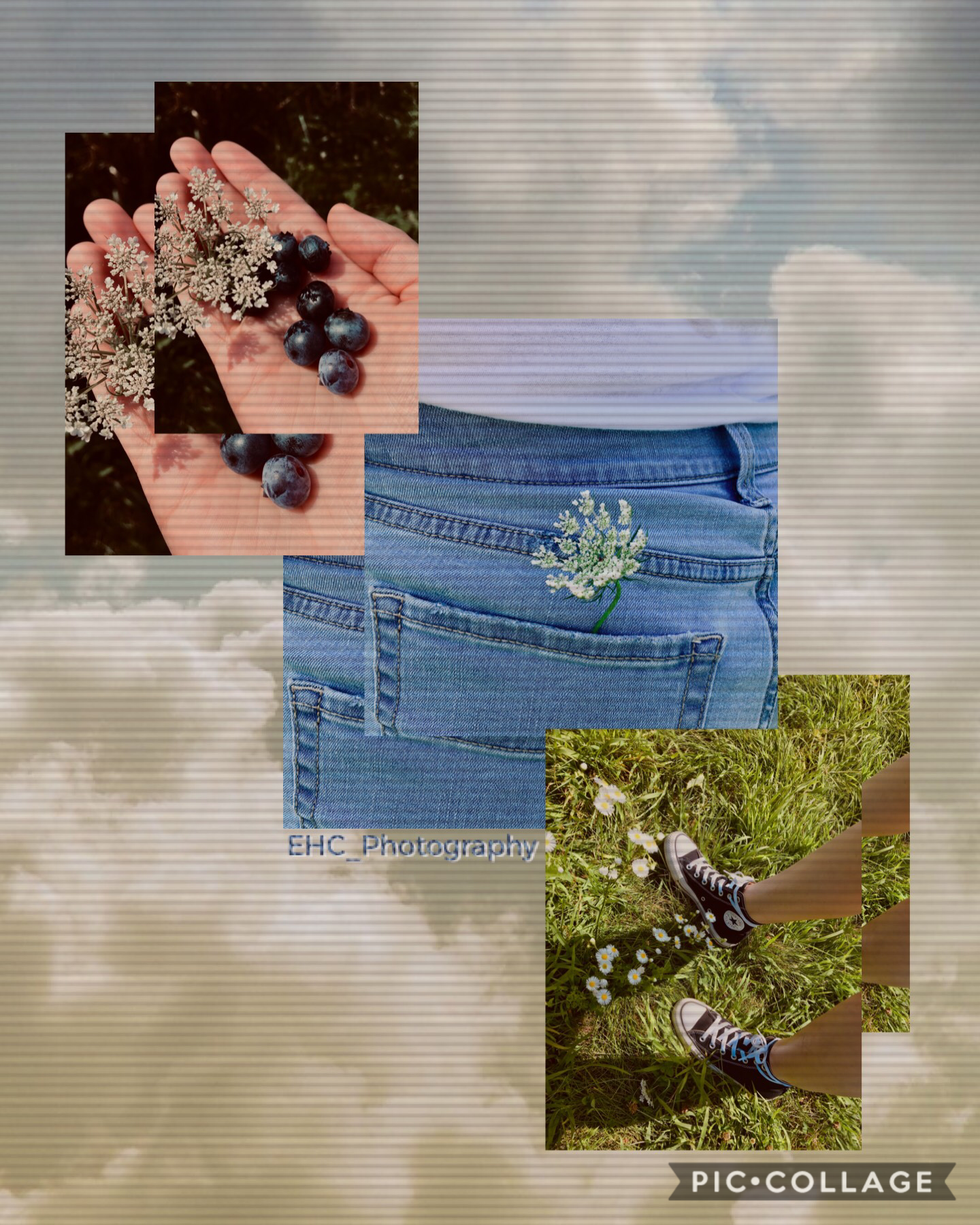 [ 🌼 🍃 🖤 I took these recently when I went blueberry picking. ☁️ 📸 👖 ] It's been forever since I've posted, and caught up as well... 😬 How've you guys been??? 🙃 I've been alright and busy, but doing hardly anything at the same time if you get me. 🤙🏻