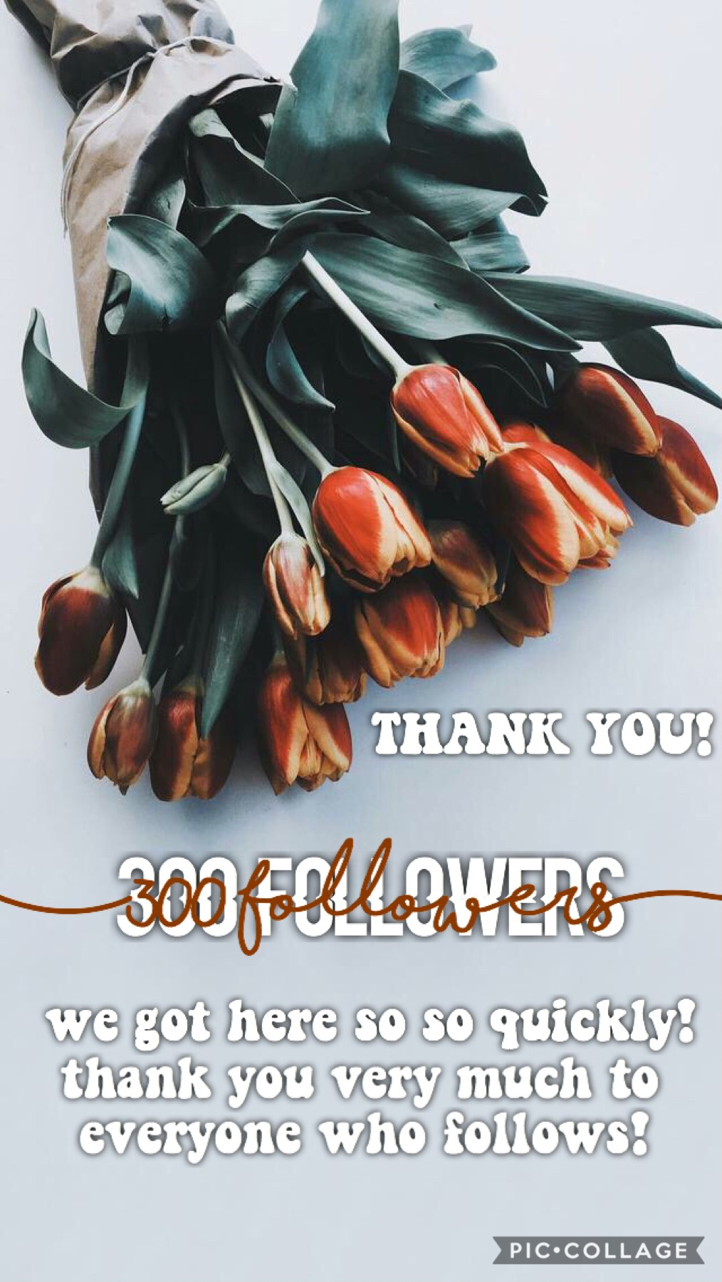 300 followers... 🤩 thank you so so so much everyone!!! i would like to do something for everyone but i don't know what i could do 😬😬 any suggestions anybody? -lots of love, ella 🤩💓