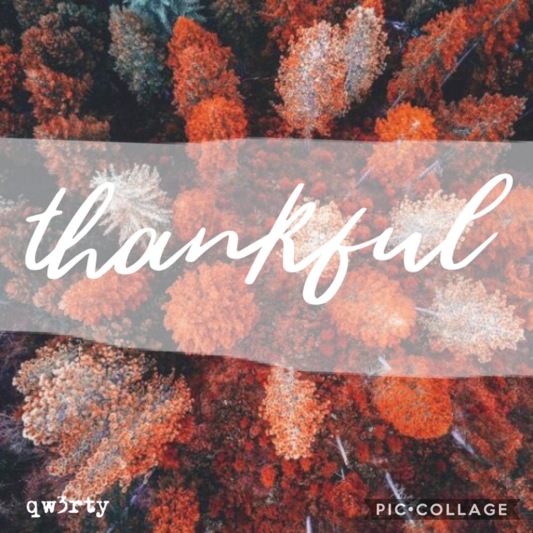 Tap Happy thanksgiving y'all! We all have so much to be thankful for, I can't fit it all here! It's been so looong, I've been so busy with school and stuff😩 Leeli