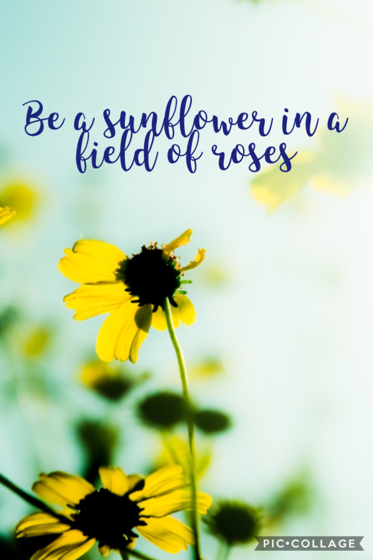 What is your favorite flower? Mine is a sunflower