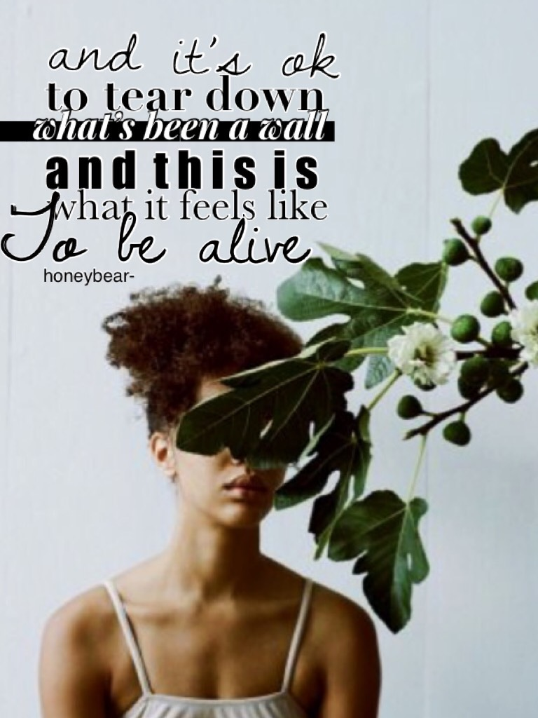 Collage by Honeybear-
