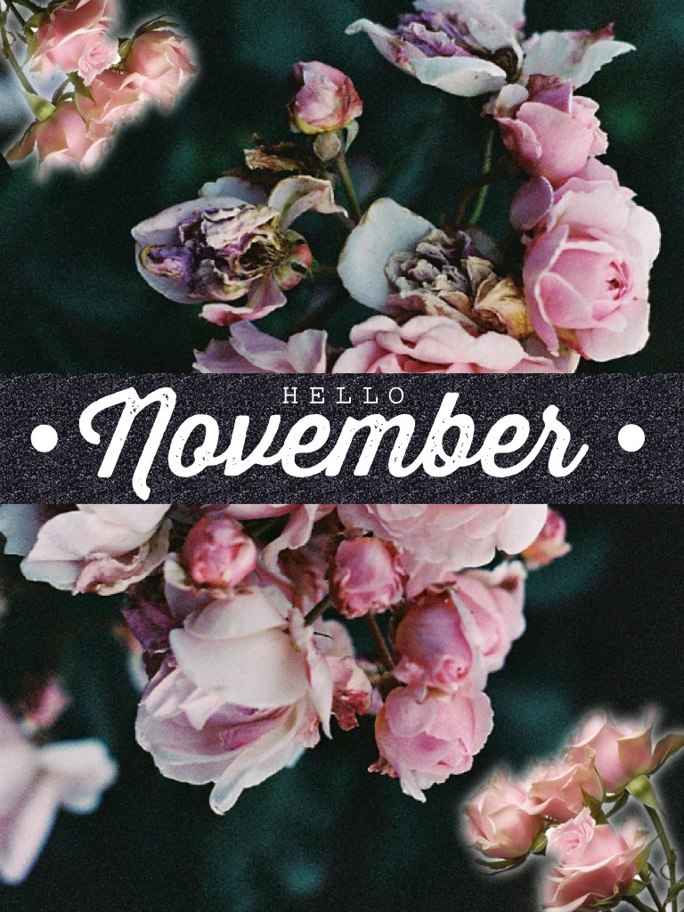 🌷tap 🌷   Hey lovelies! 💐I haven't been posting for a while because of all my homework and I've been really busy. (Basically work in general) 😅 Here's a collage welcoming November 💓💓  xox mel 🌺
