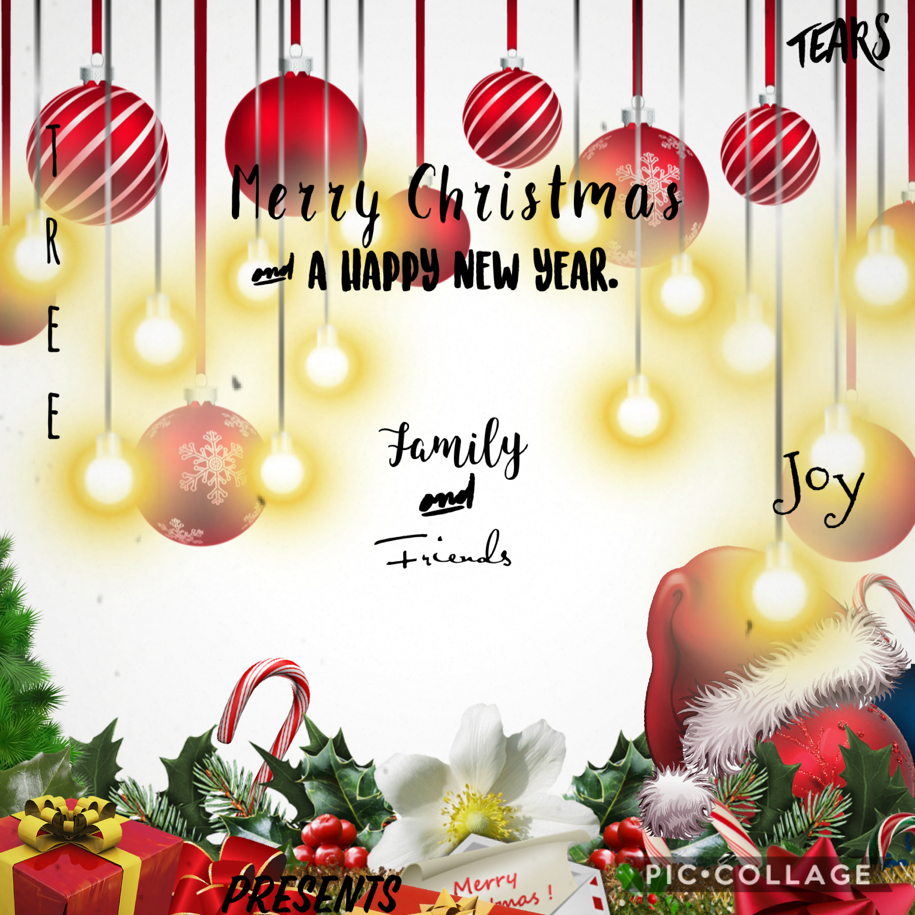 Merry Christmas 🎁 and a happy new year 🎆