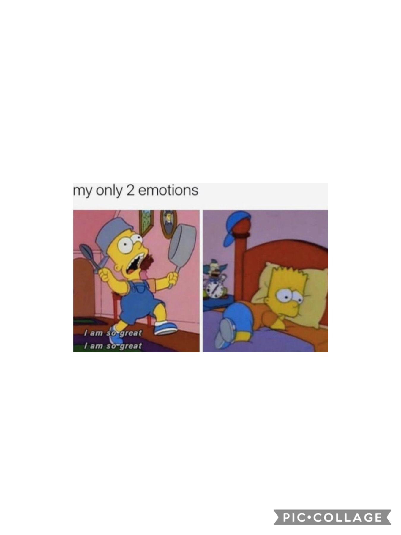 daily meme #4