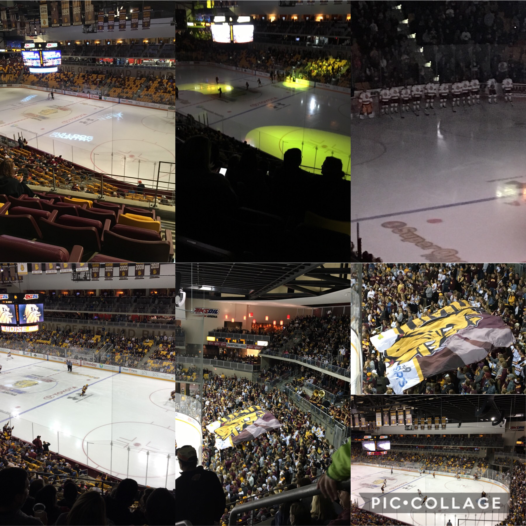 At the bulldogs and gophers game