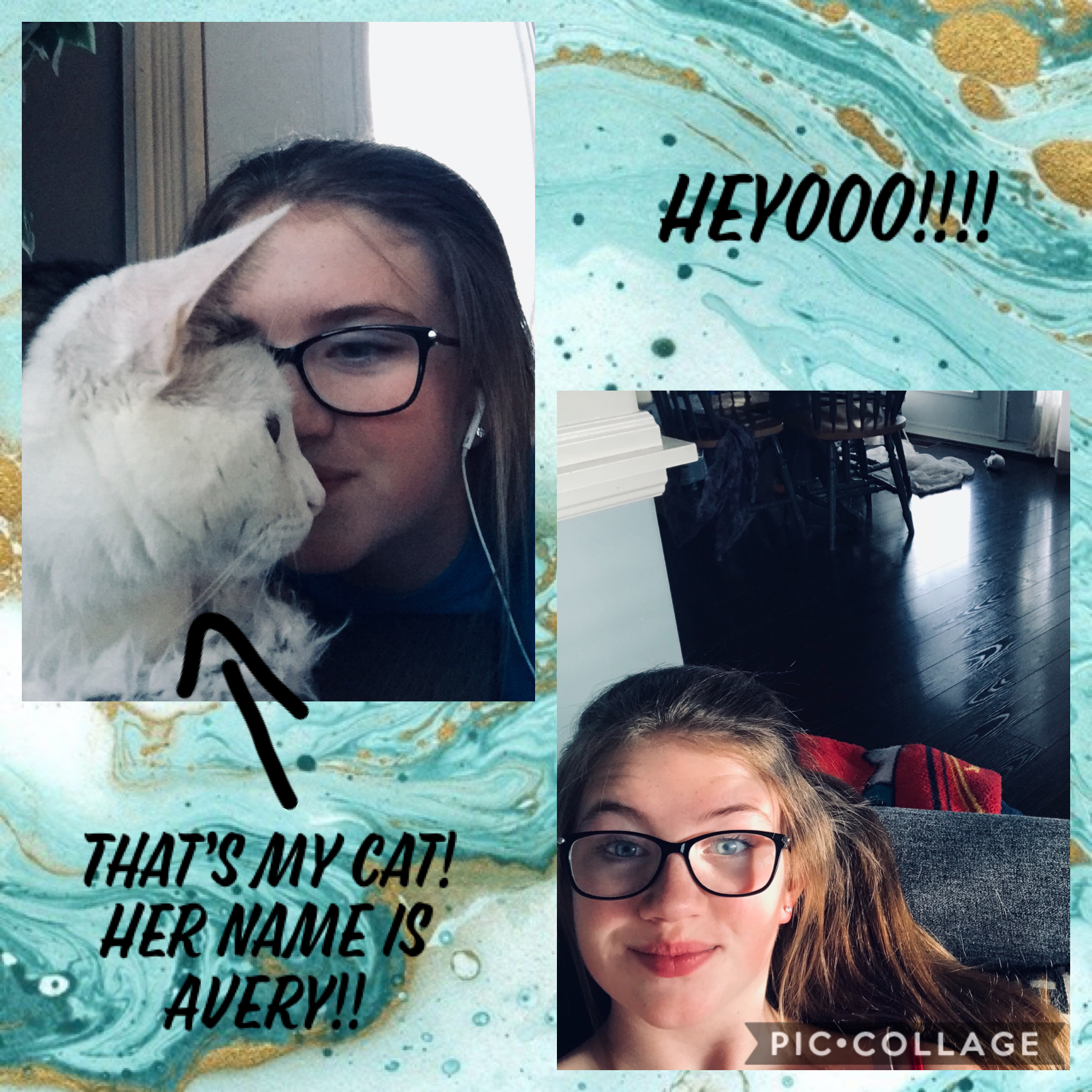 Avery is the star here!!🐈