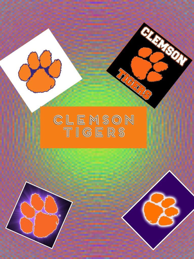 🏈🏈  South Carolina   Clemson tigers