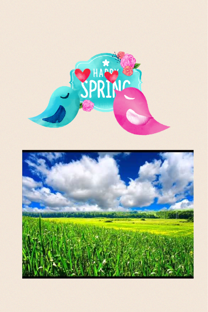 Happy spring ever one