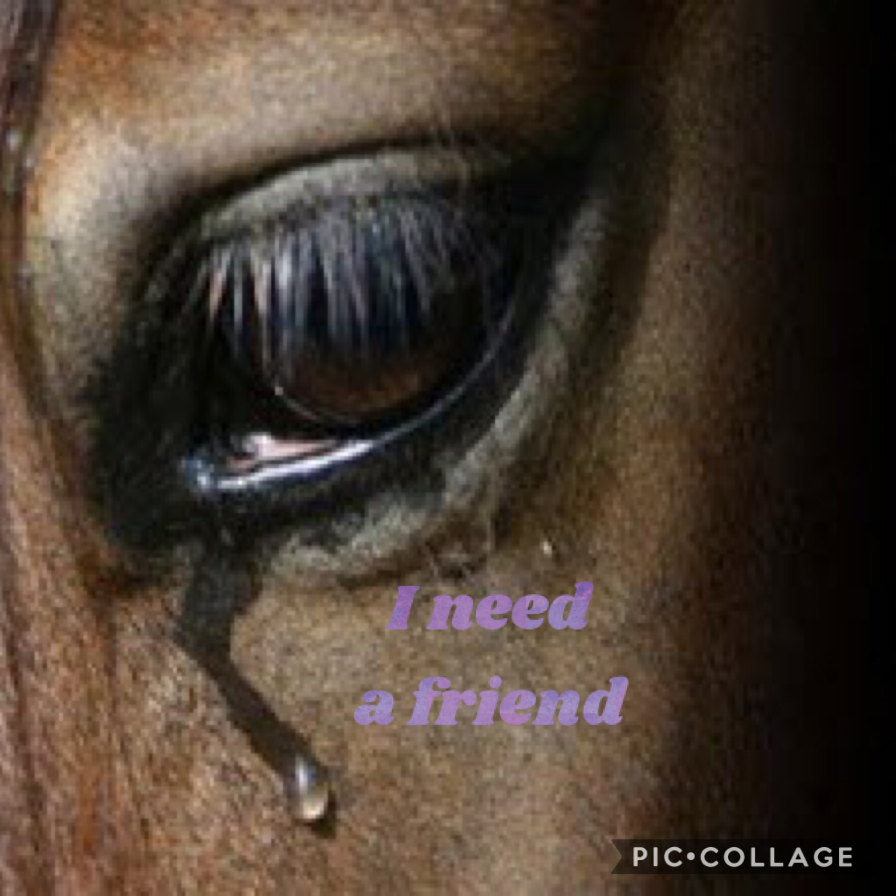 I need a friend.. have had problems with friends!