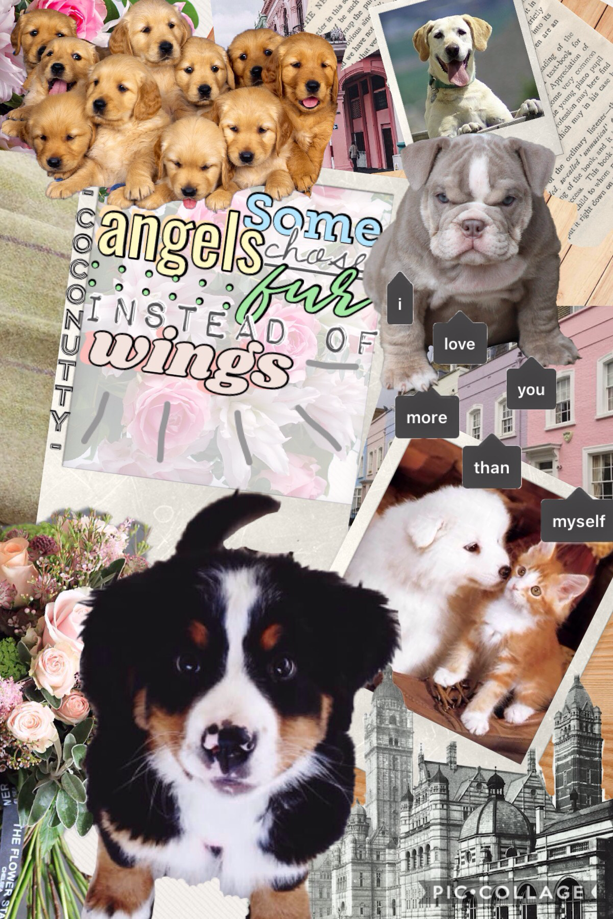 Inspired by @meandmeonly! She makes AMAZING collages!