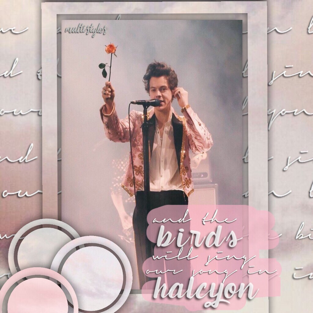 tap 🌷 um yea hi!!! i haven't been on in so long, i also haven't edited in ages so this is my first edit in a couple months so i hope you all like it.  love always,  multistyles 🌼