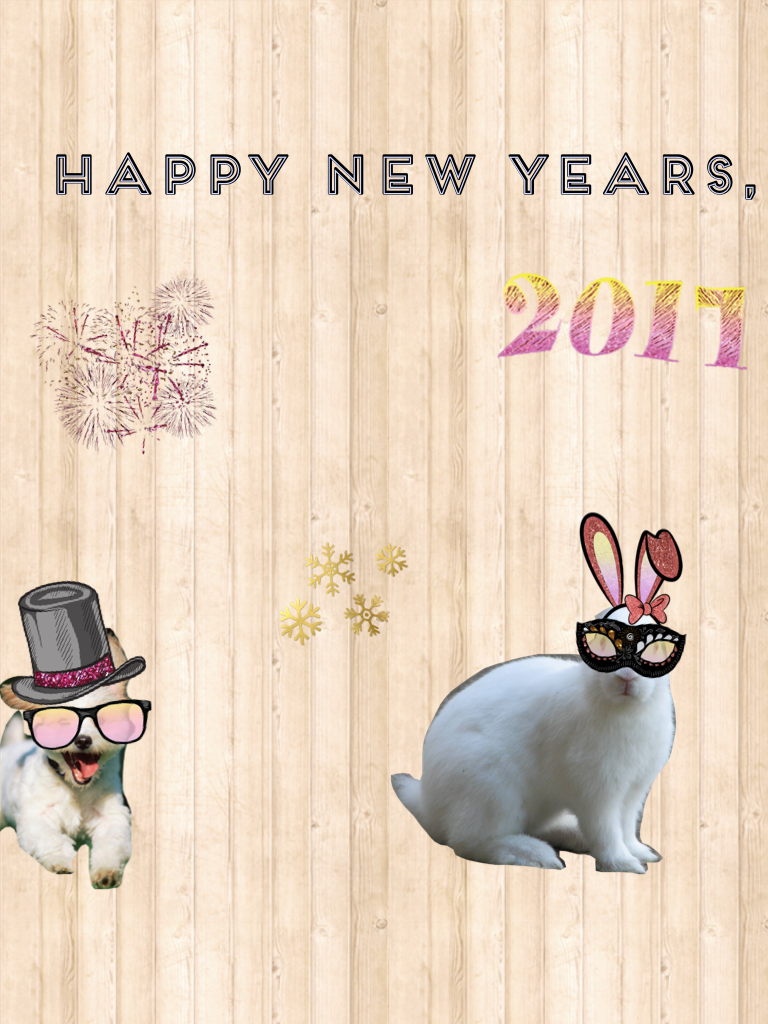 Happy New Year!!!☄