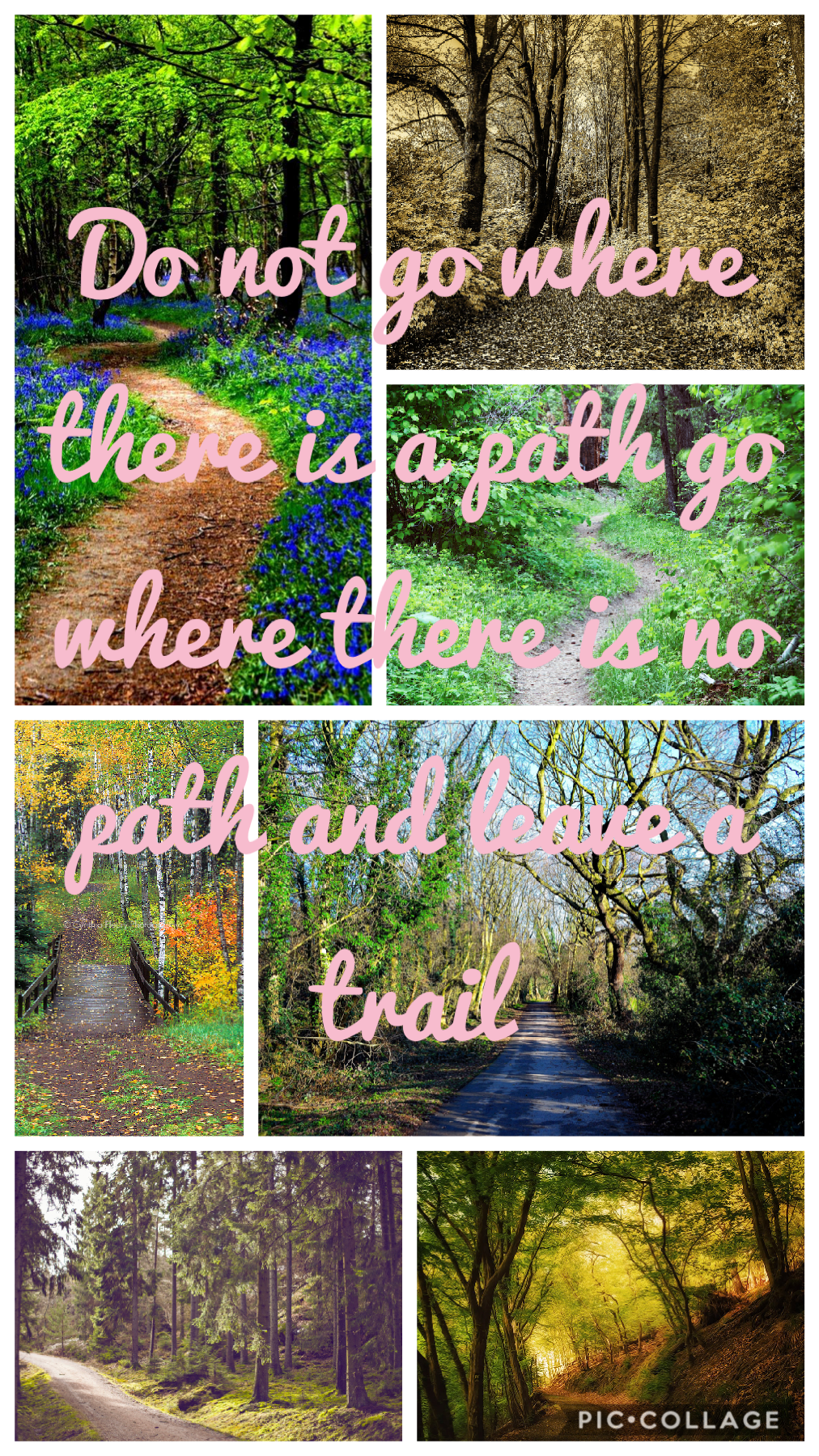 Do not go where there is a path go where there is no path and leave a trail