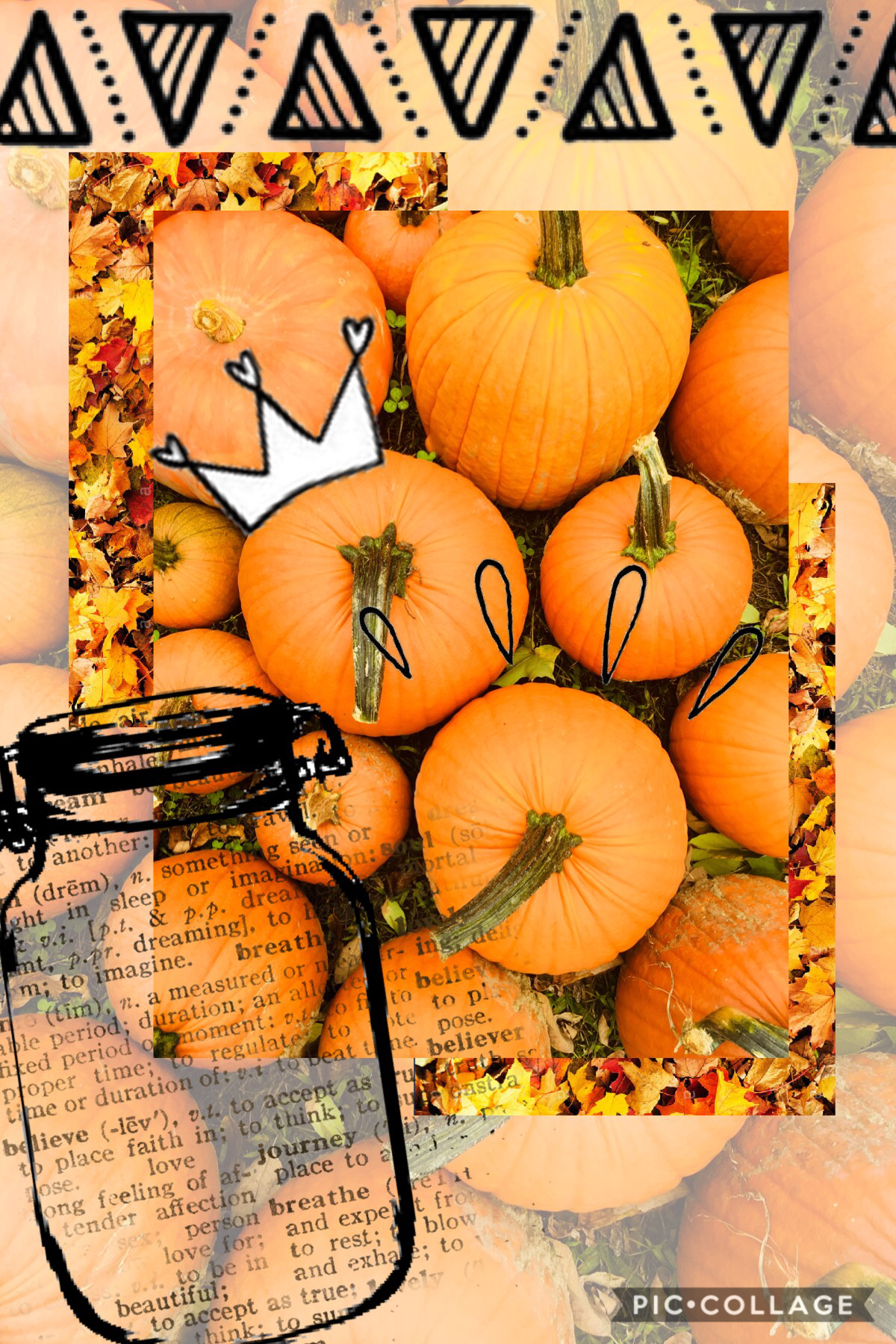 I took this picture of all the pumpkins, I thought it looked artsy and autumnal!