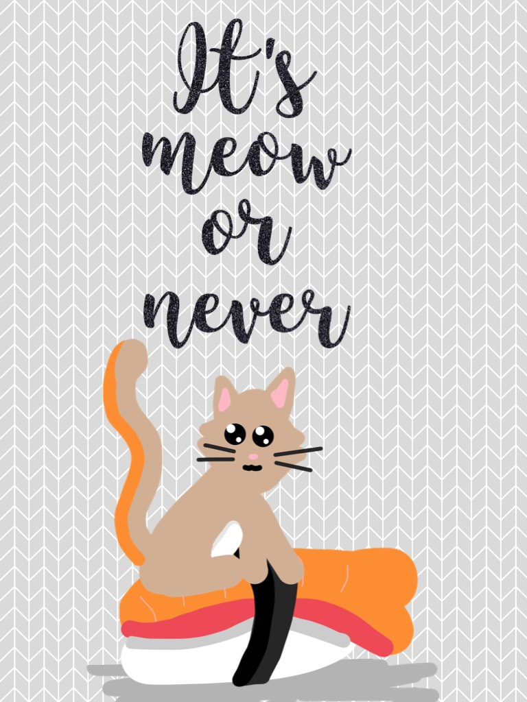 It's meow or never (=^ェ^=)