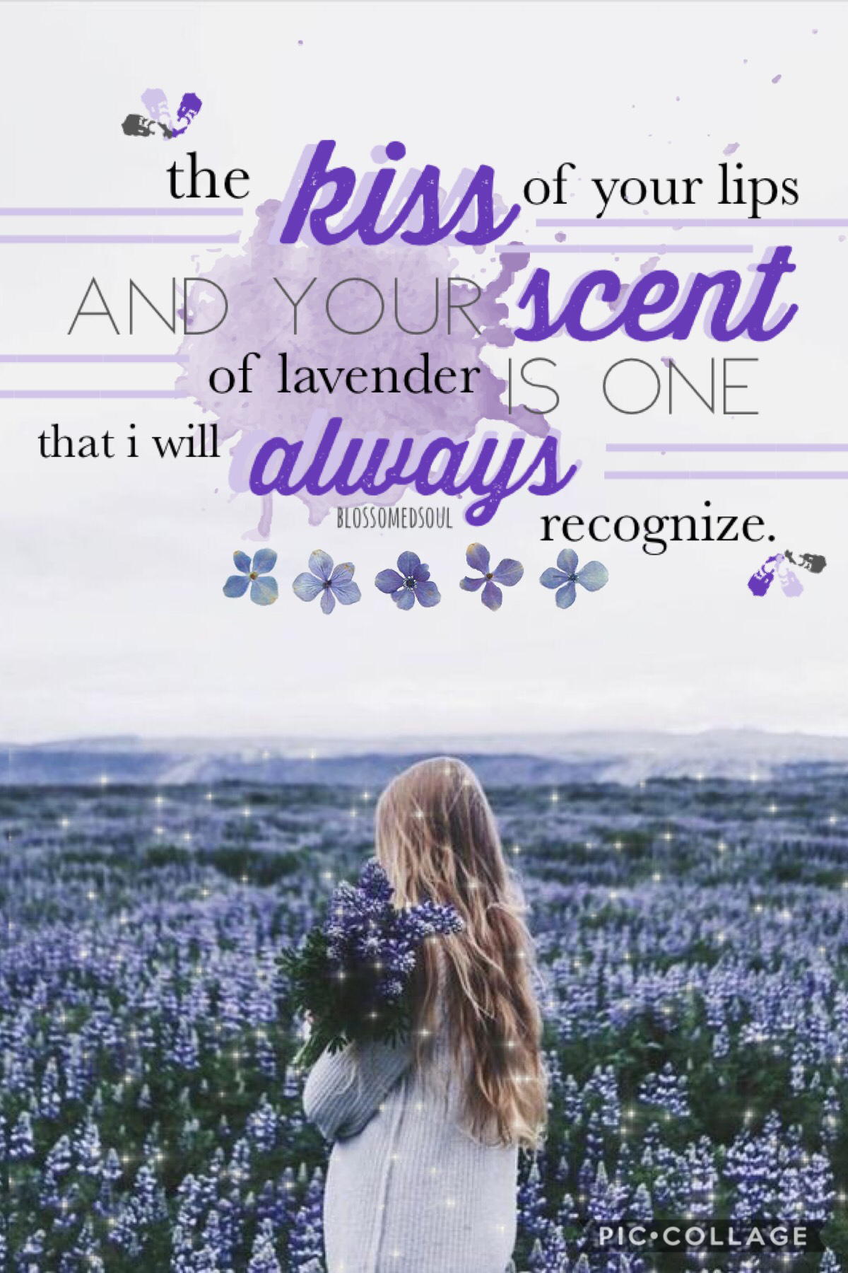 t a p  sorry that i haven't posted in forever! here's a quick little collage i worked on 🙃 quote by me! ♥️ qotd: do you like the smell of lavender? aotd: not really, but it's a pretty flower 🌿