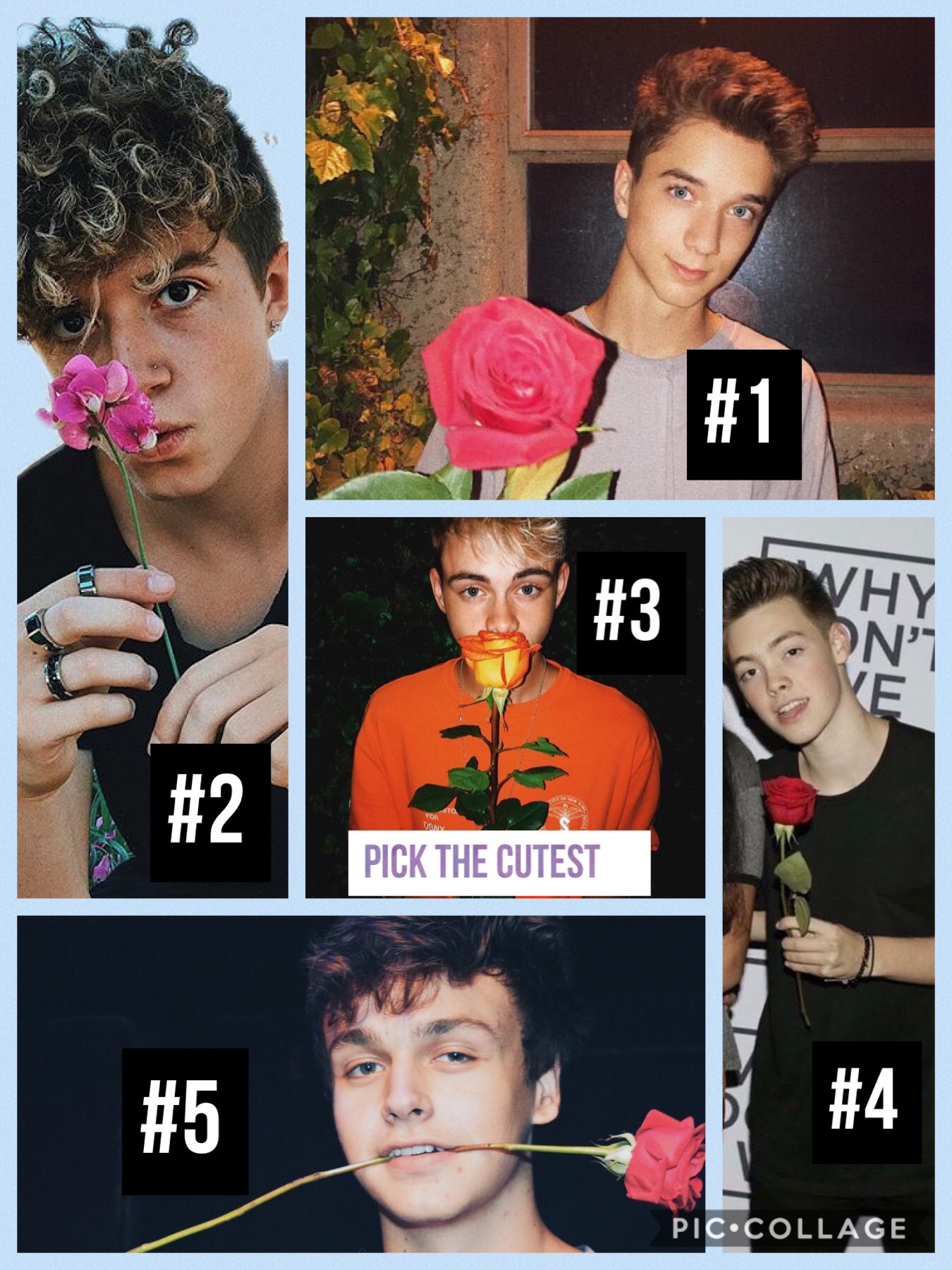 This is Why Don't We: like if you live in the USA