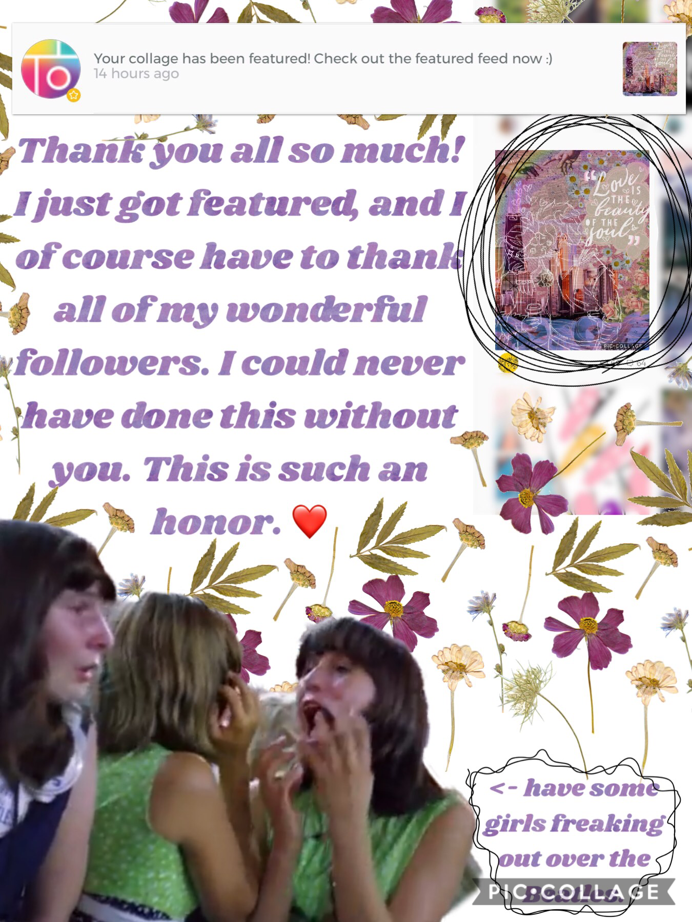 🎉❤️This is my second time getting randomly featured on my account, (as in not joining a PicCollage contest) so thank you everyone. ❤️🎉           I think I've caught Beatlemania (wow over 50 years late to the party)