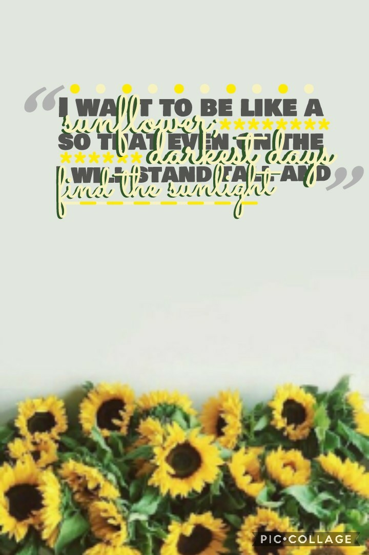🌻🌻 idk why but for some reason I LOVE the gray quote things in the corners. I saw someone do it and decided to try it out!