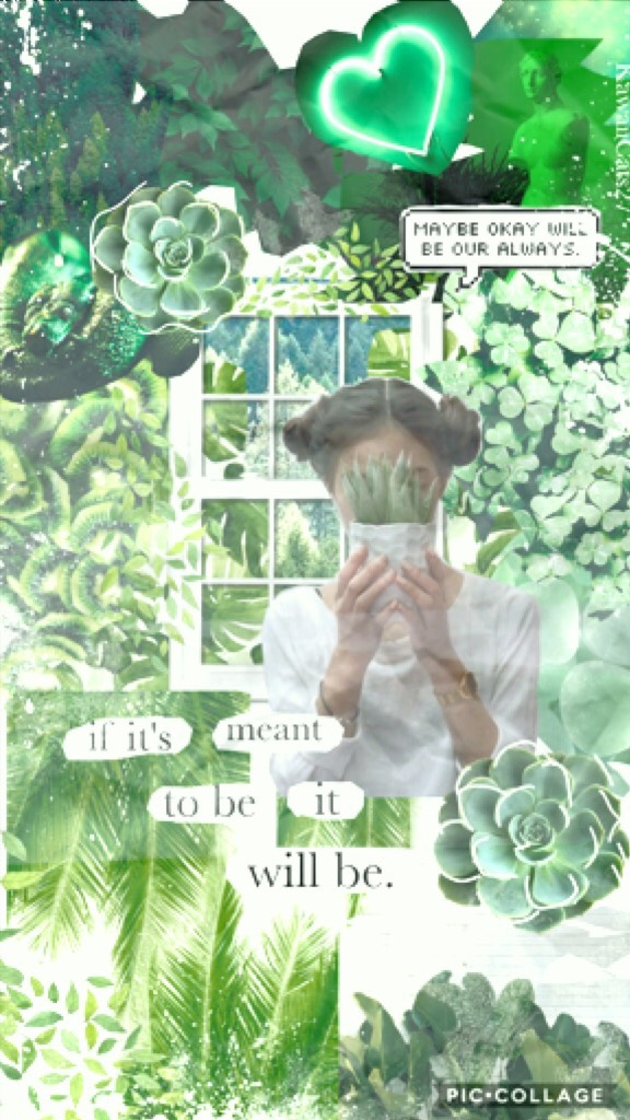 Tap! Sry for the Slight inactivity! School just started so I'm kinda busy! Anyways Rate!! QOTD: On a scale of 1-10 how much do u like school? AOTD:probably a 8.5! 🍃🍃🍃🍃🍃🍃🍃🍃🍃🍃