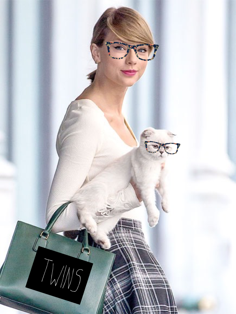 die taylor swifts cat - 600×900