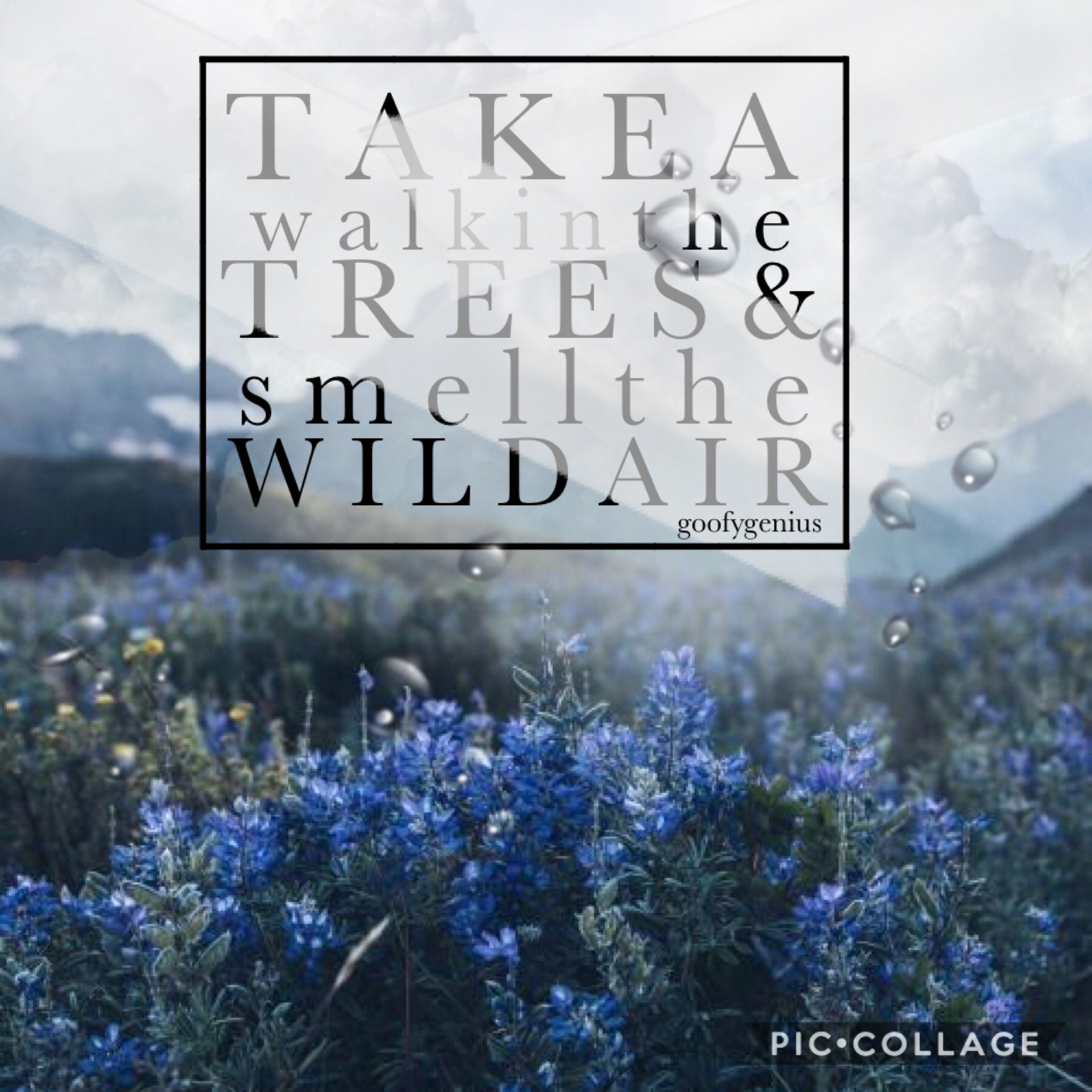 💙Tap Here💙 Just a simple collage for you guys. I'm looking for a decent style but nothing really worked out. How's is everyone doing? Rate 1-10. QOTD: Should I post my bullet journal here?