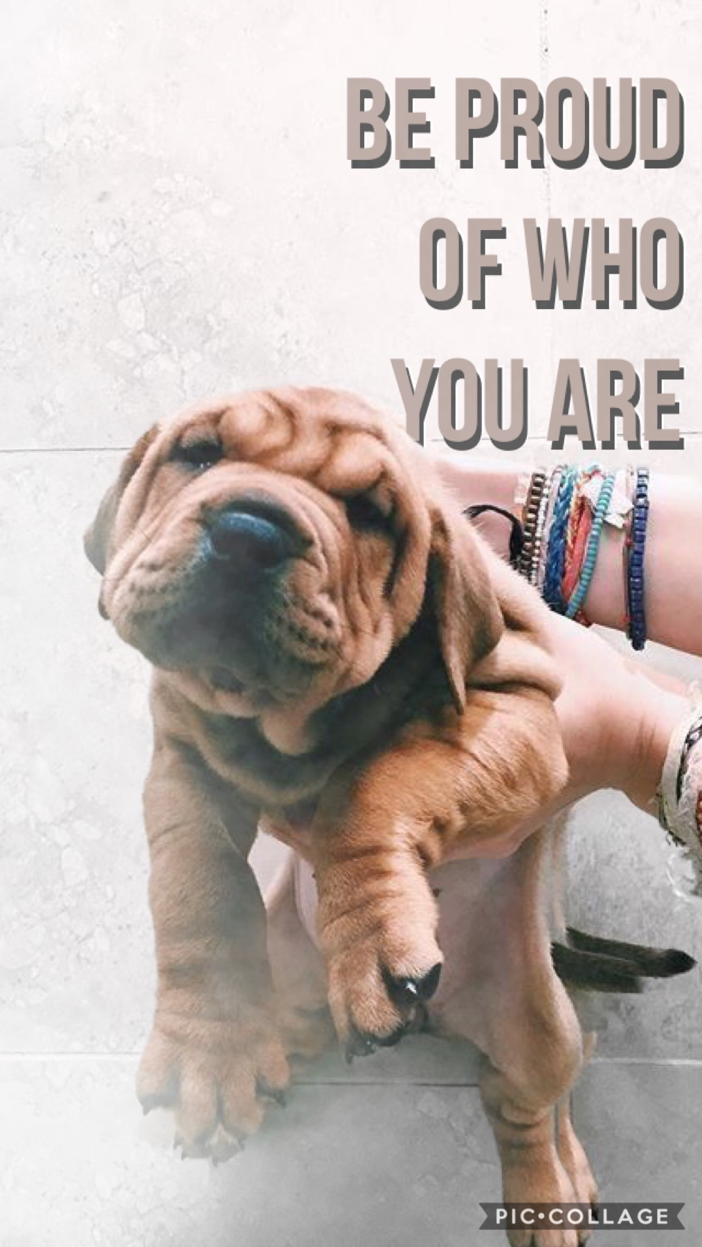 Be proud of who you are! - Bleu💙