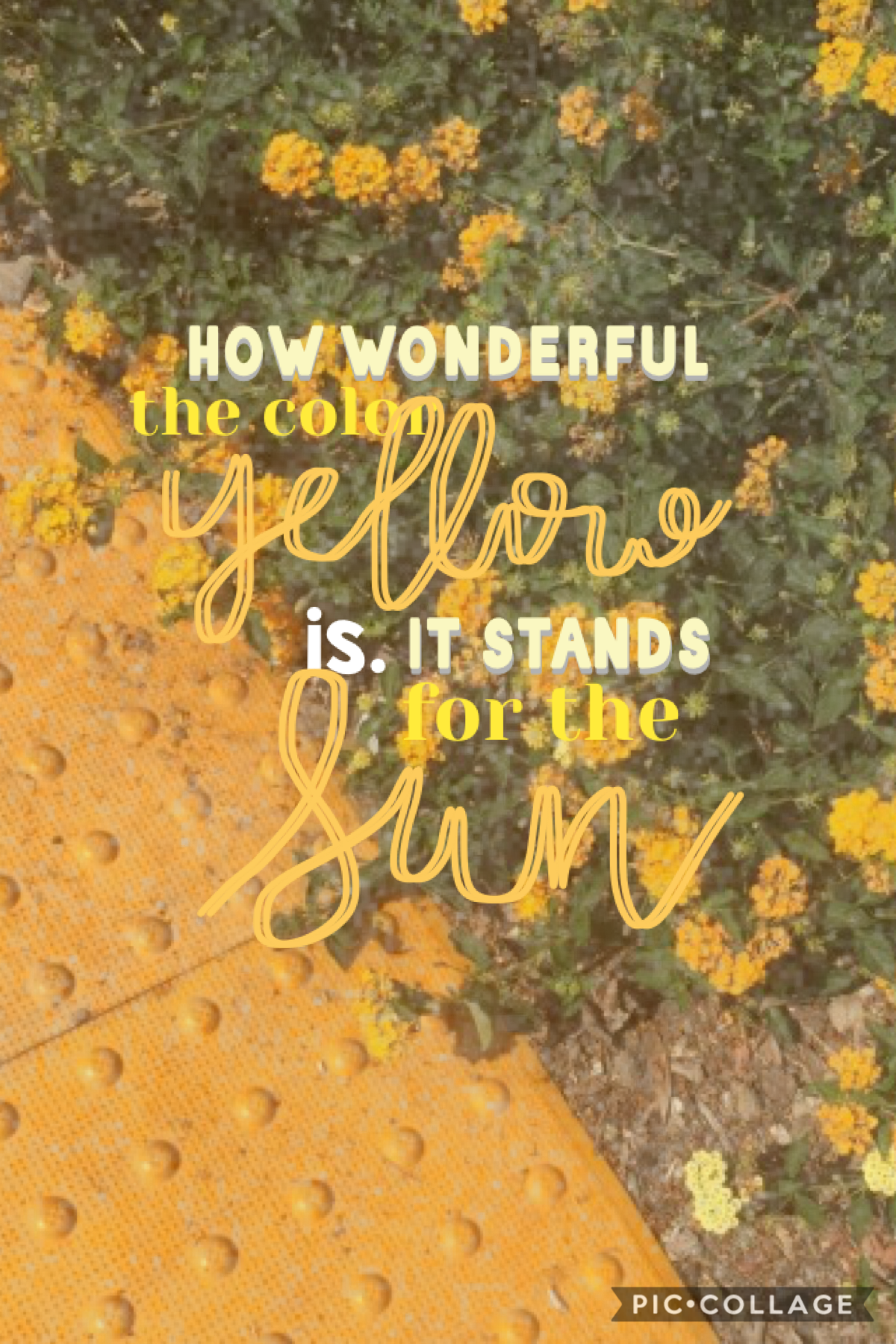 💛t💛a💛p💛 Borrrred  Yellow rocks   And I know it's almost winter  But I LOVE yellow
