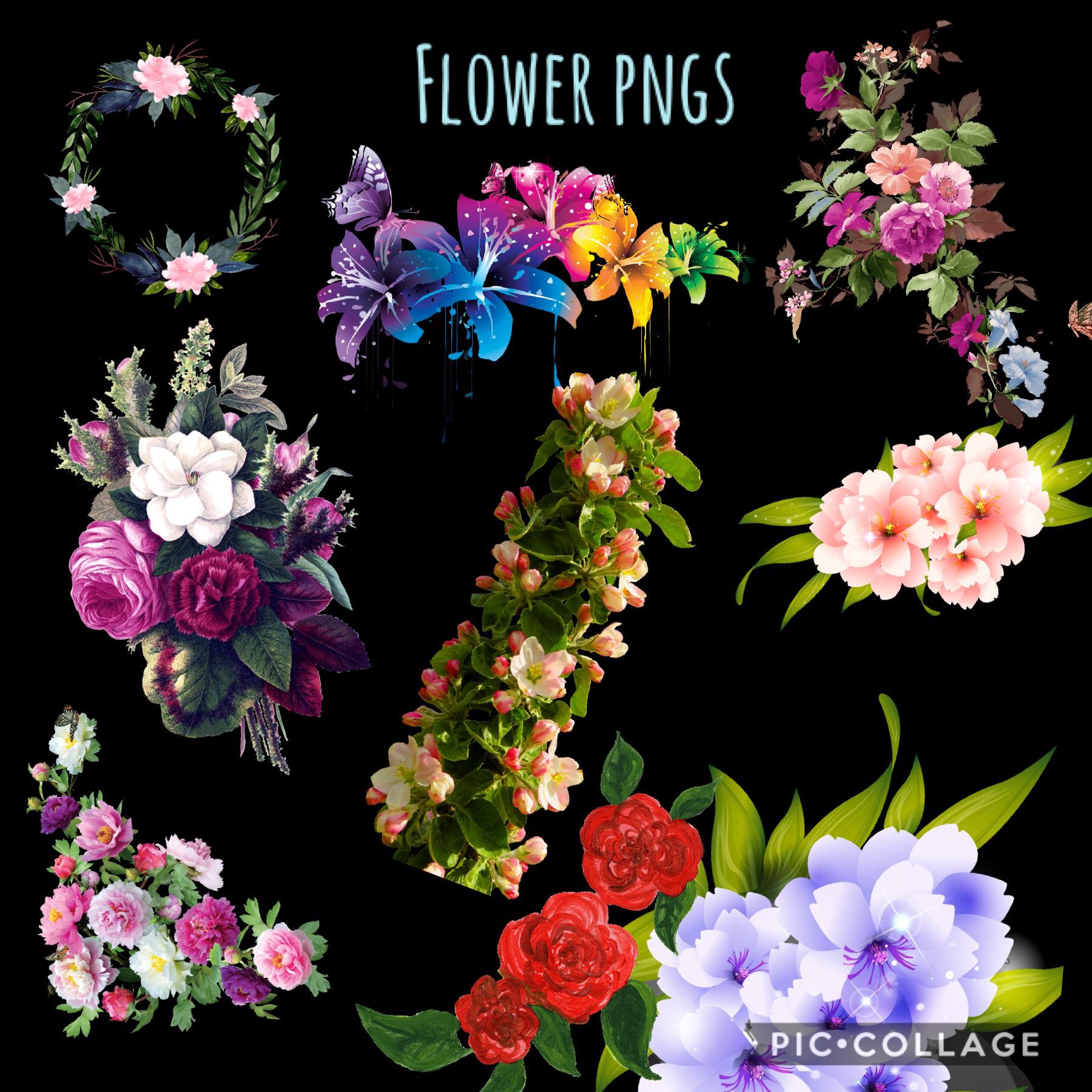 Flower Pngs
