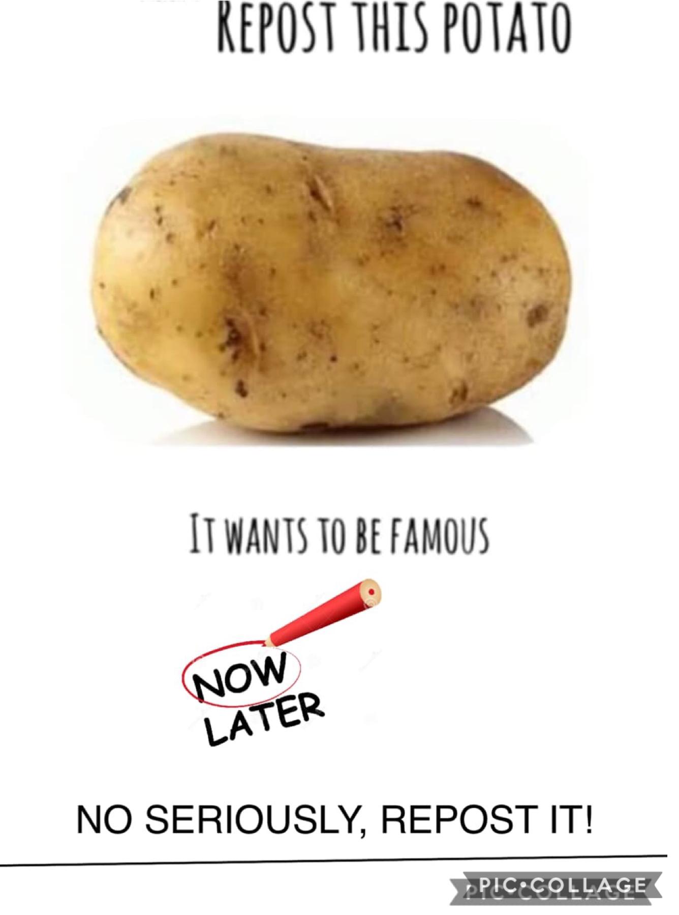 repost this potato pls! 🥔