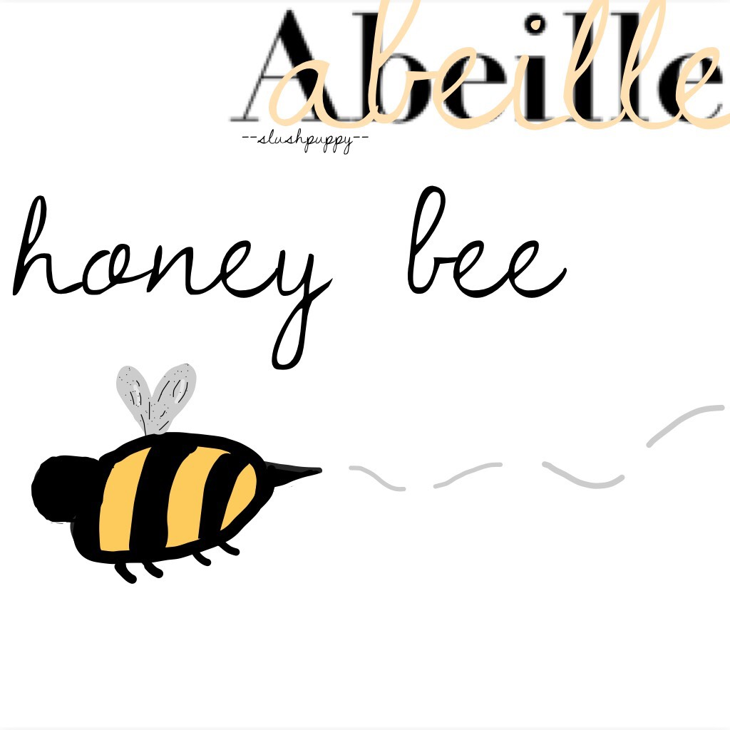 abeille🐝🍯 tap ayyo slushies what's up? premise that I did at like 3am when I got bored. Abeille is French for honey bee. I drew that bee; what do you think?🔆 please comment ideas for collages/themes, send quotes or backgrounds, or just chat! I'll try to p