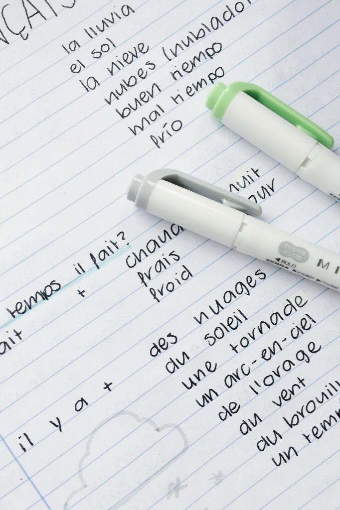 français notes for y'all cuties! 💛™️ j'aime trop cette langue. 👐🏻💭