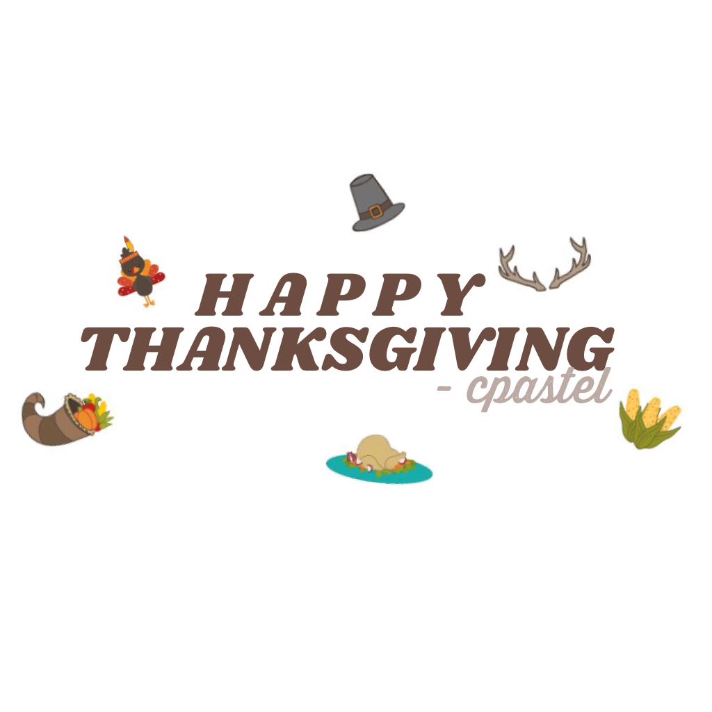 wishing everyone a warm and beautiful thanksgiving 😊💫 enjoy your turkey and family!