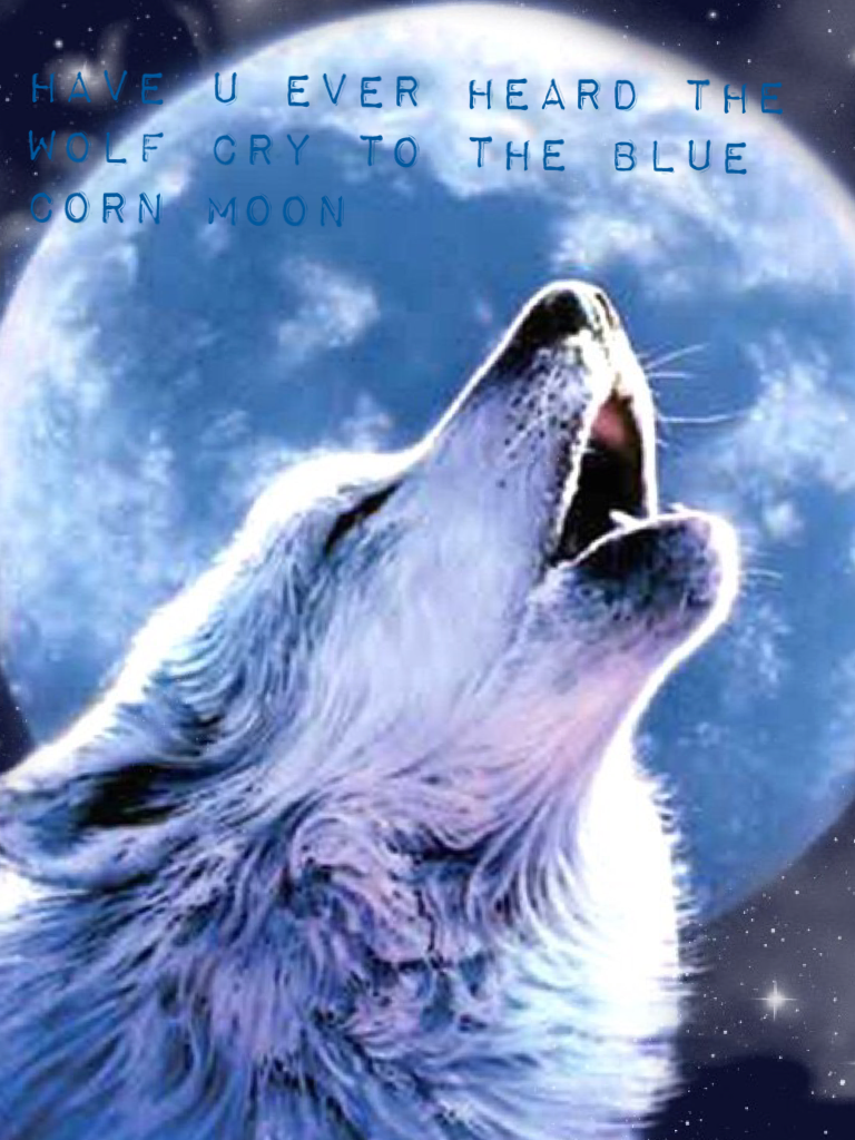 Have u ever heard the wolf cry to the blue corn moon