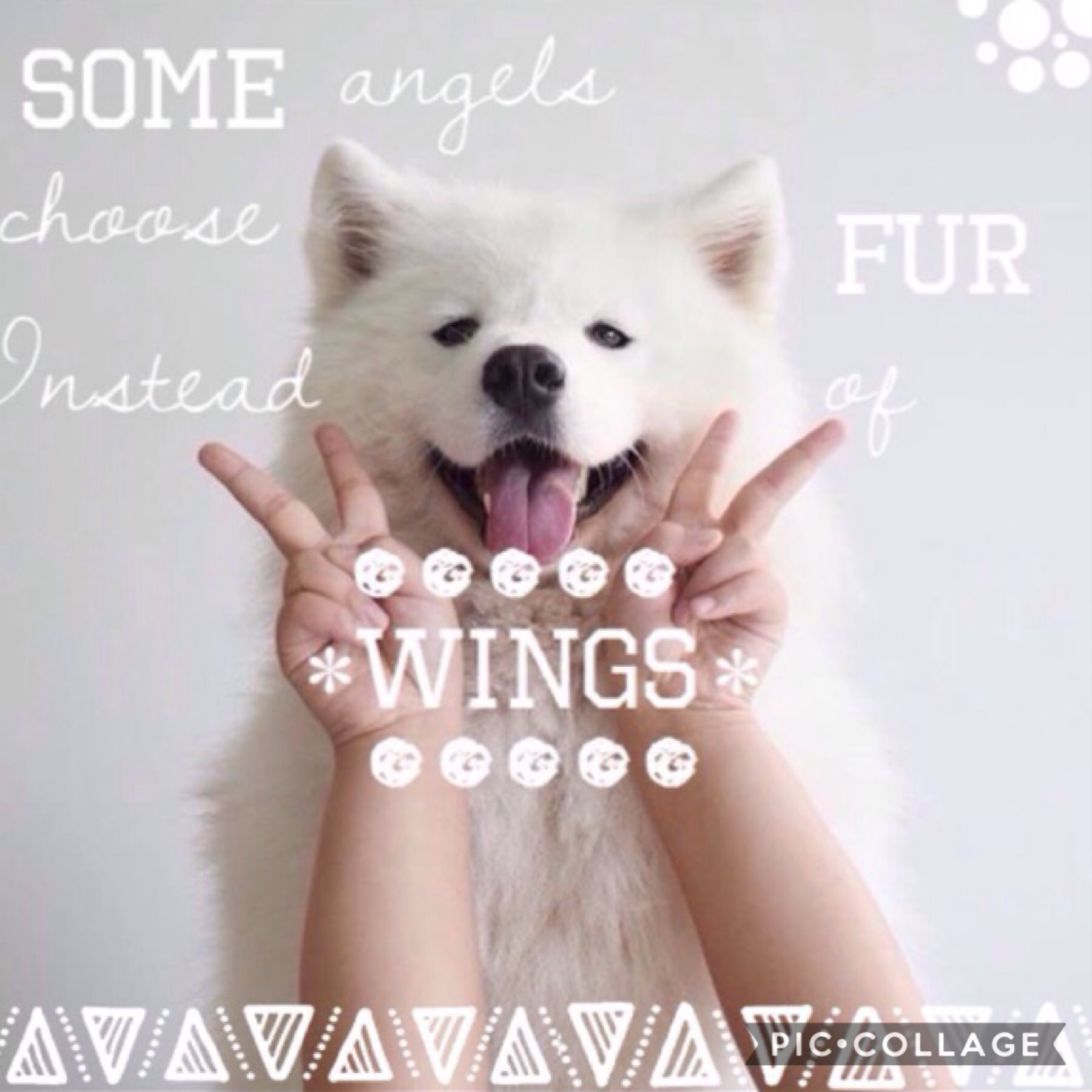 Tap This was a contest entry  and I thought it was kinda cute 😂 anyway I'm bored so you can comment whatever on here except for self advertising cause that's boring       lol no body is ever actually gonna comment on this