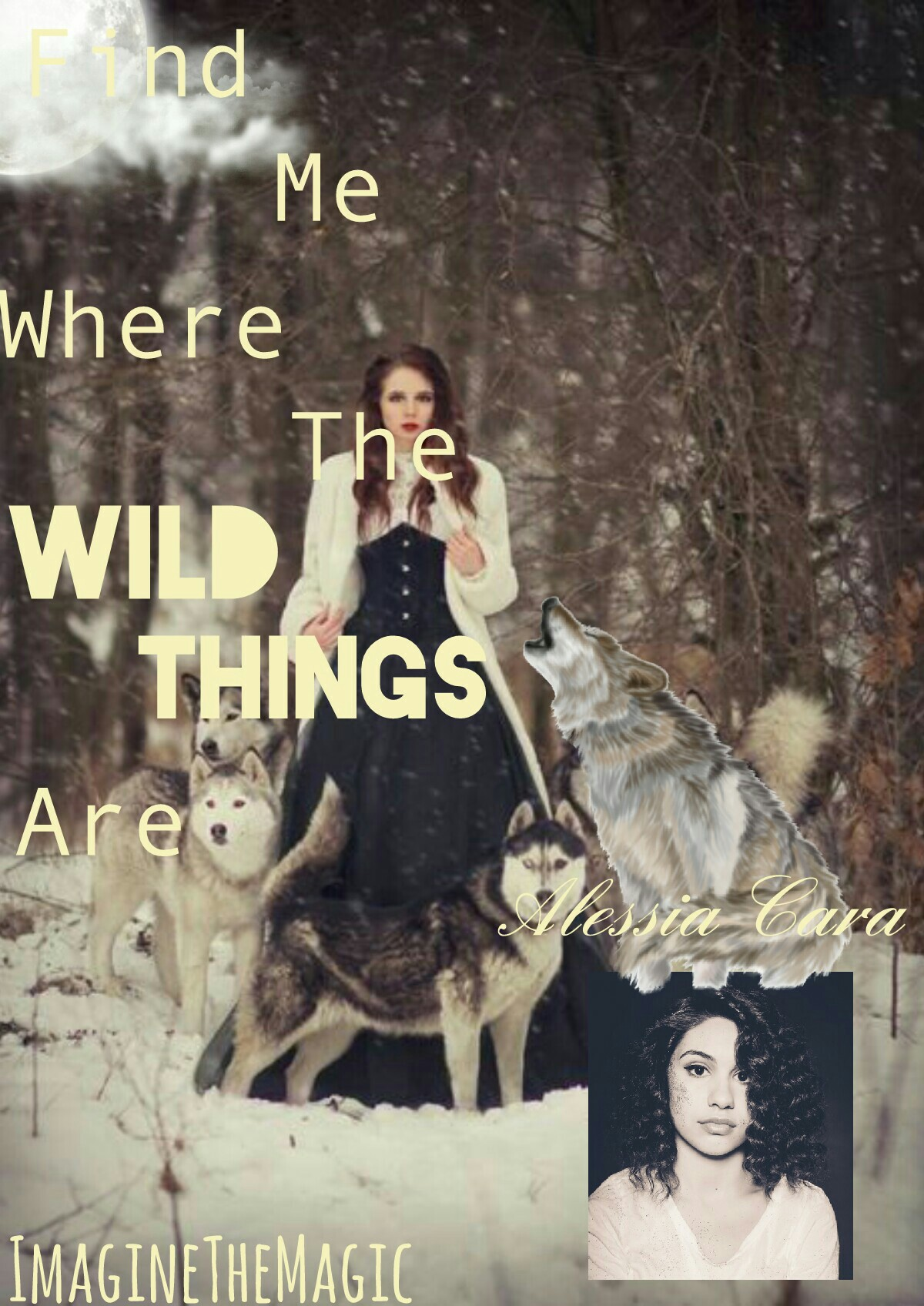 Wild Things By Alessia Cara! This is my personal thought process on the songs meaning put on a collage.