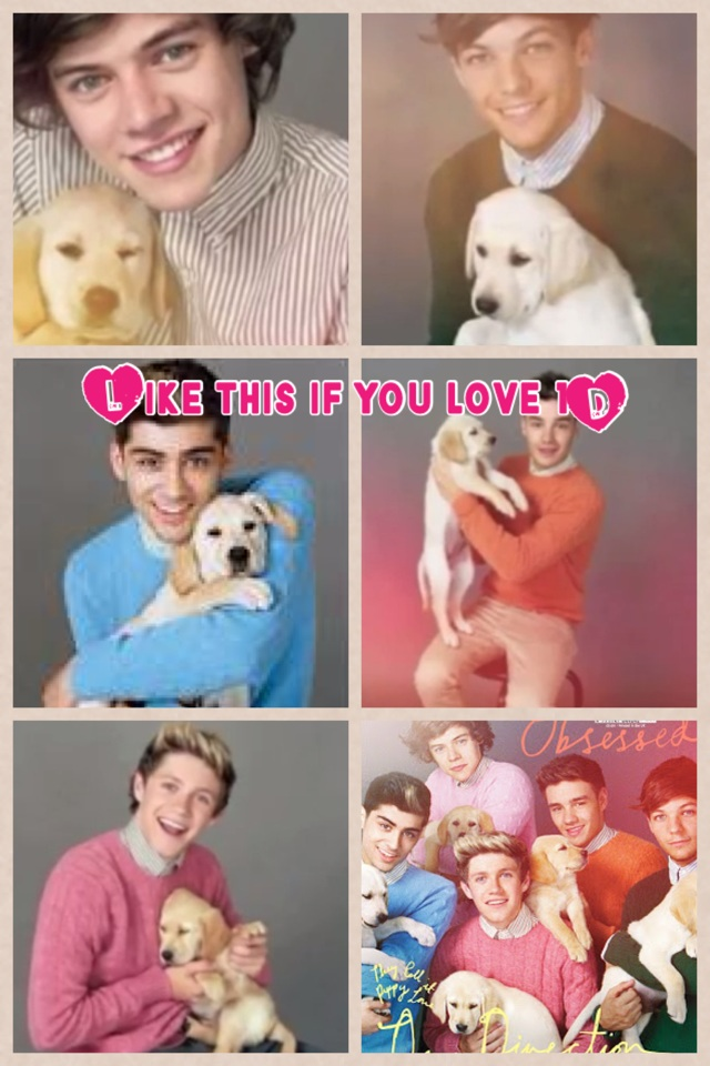 Like this if you love 1D