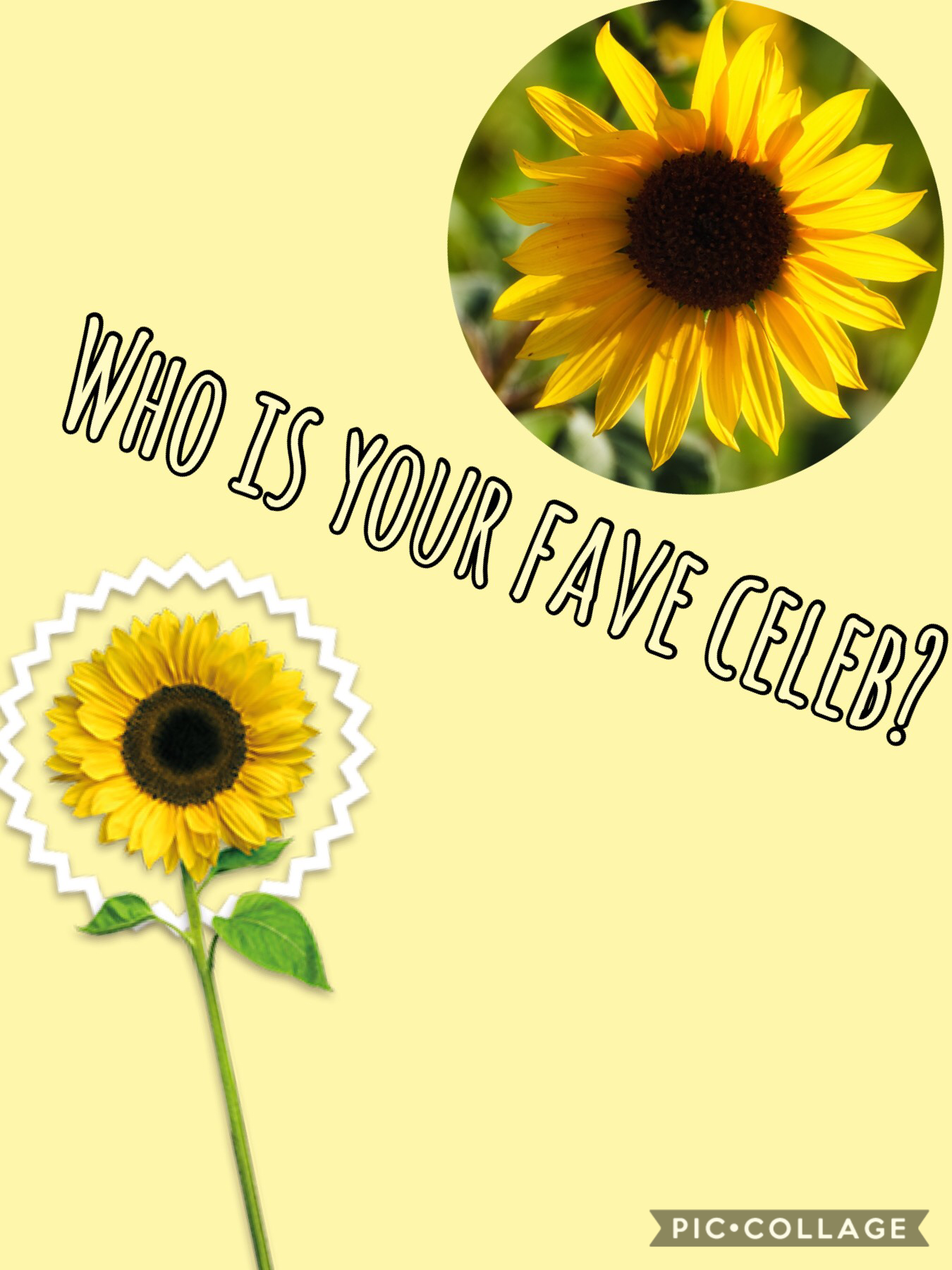 Who's your fave celeb?