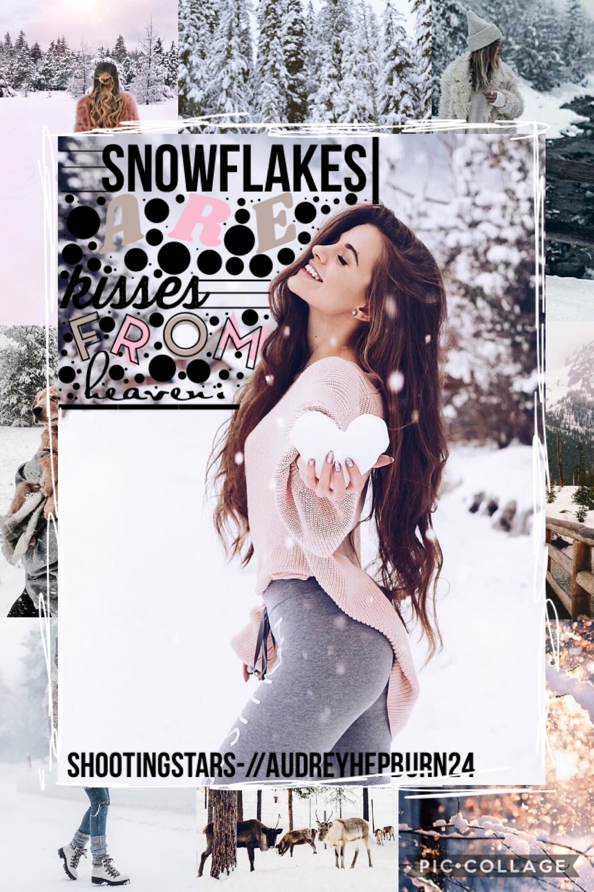 ❄️{31/55}Collab with the kindest (Tap)❄️ audreyhepburn24!!! GO FOLLOW HER! I put everything together and she chose the quote and backgrounds!! ❤️   Q// ❄️,🌸,🌞,or 🍂? A// ❄️!!!