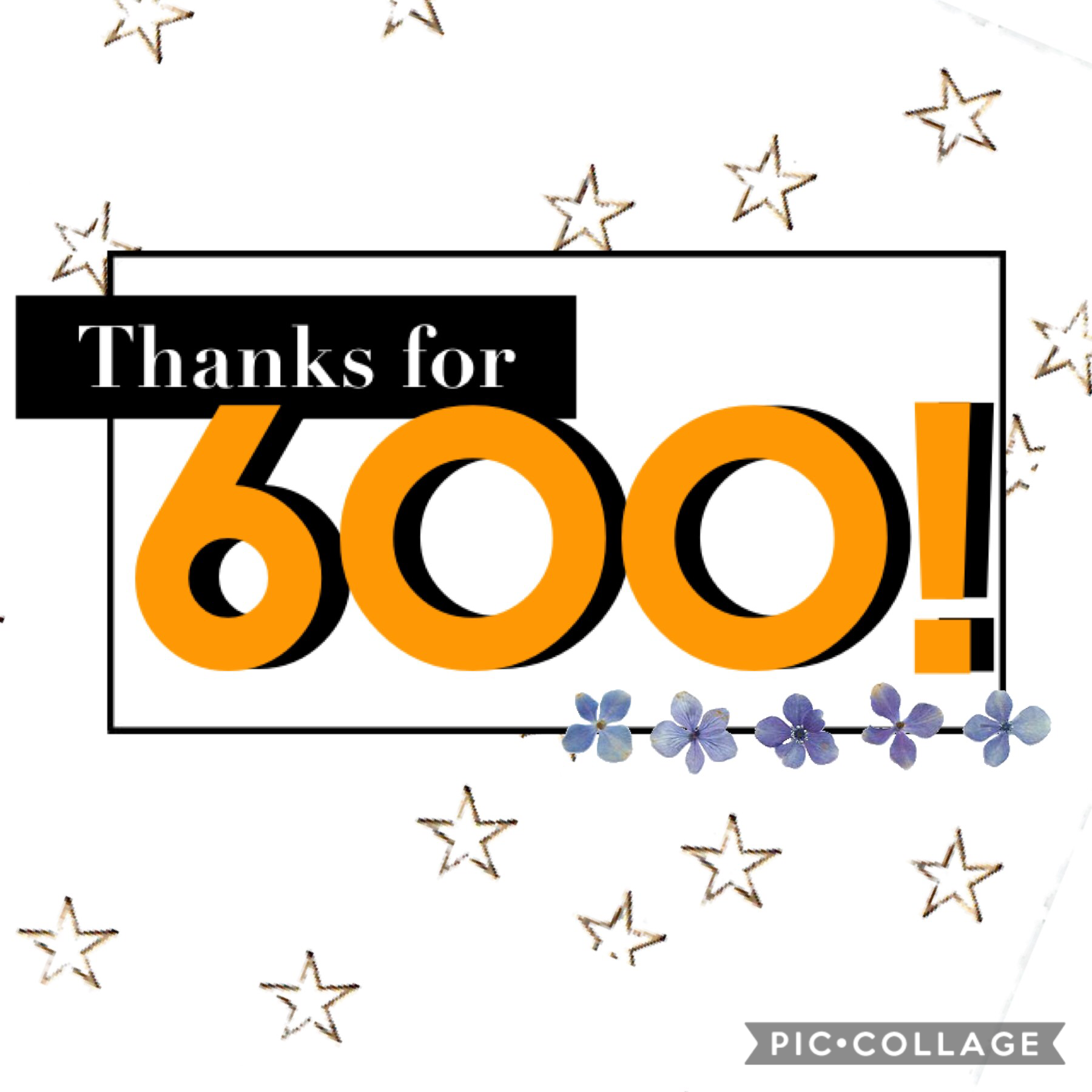 🌟THANKS FOR 600 FOLLOWERS!!🌟 This is such a big milestone!! Comment if you think I should do an icon contest, I need a new icon!