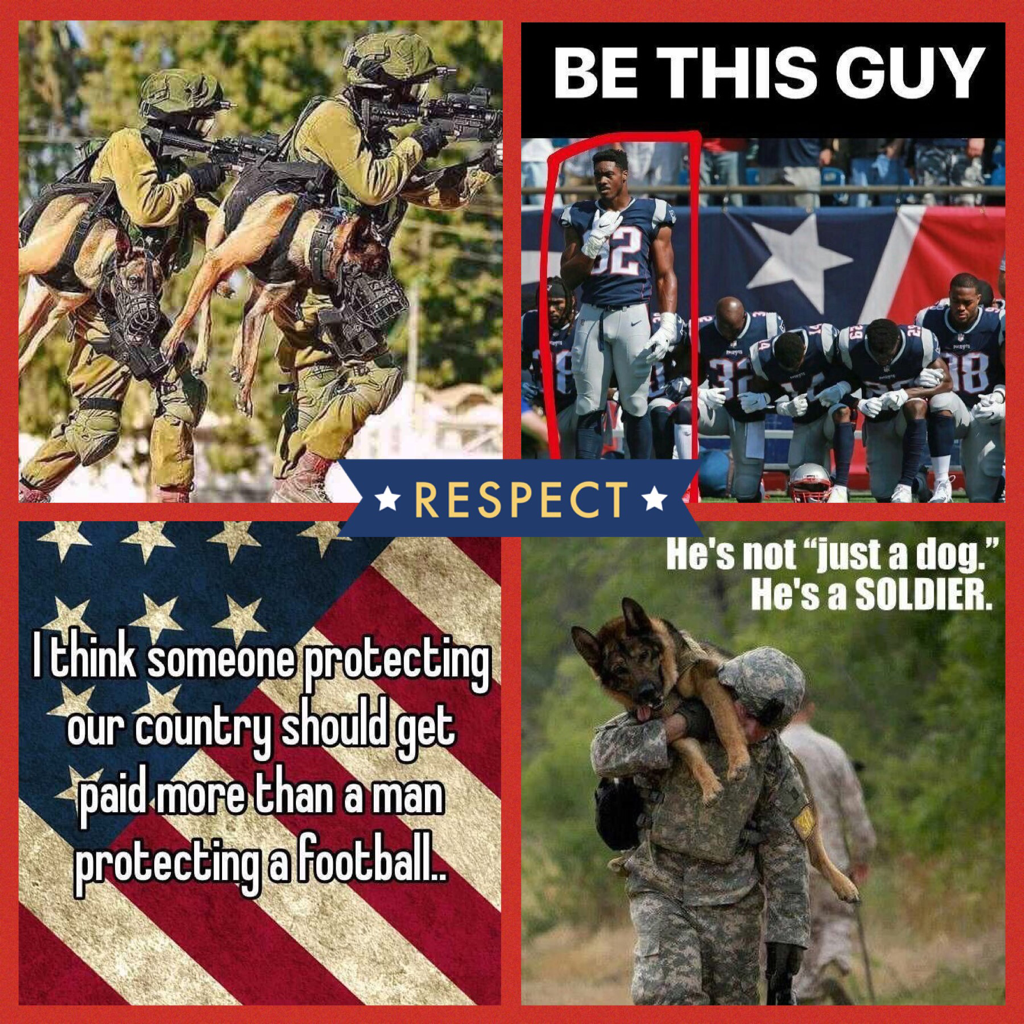 Honer and respect the ones who fought for our freedom! The right to bear arms to protect ourselves,the right to do things other countries can't do.Respect it don't disrespect it!