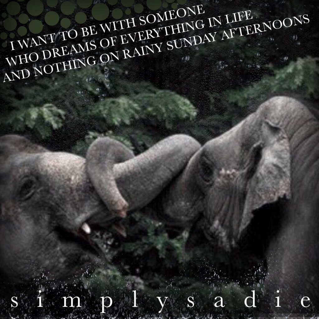 🐘 tap here 🐘  YOOOO ITS SUNDAYYYY  This is a horrible edit, but I wanted to use the quote because it includes the word sunday😂  Oh well...😂