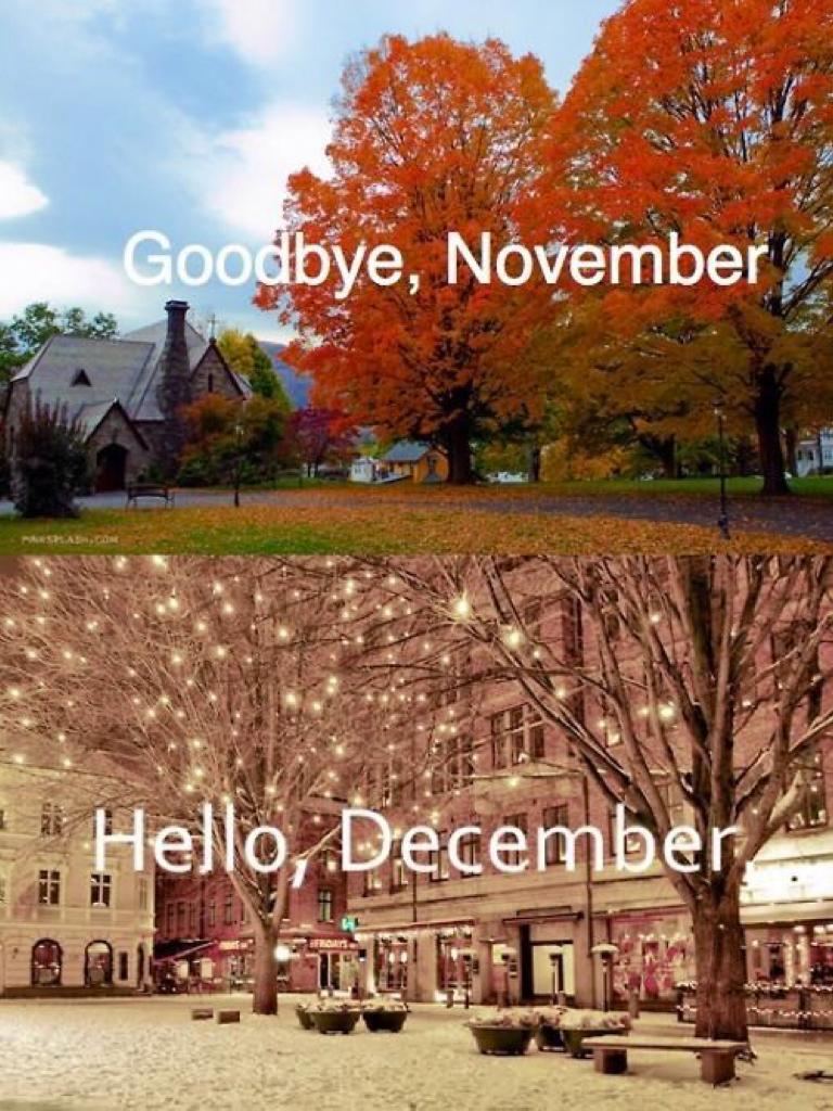 Goodbye November👋 Hello December, last day of November😞