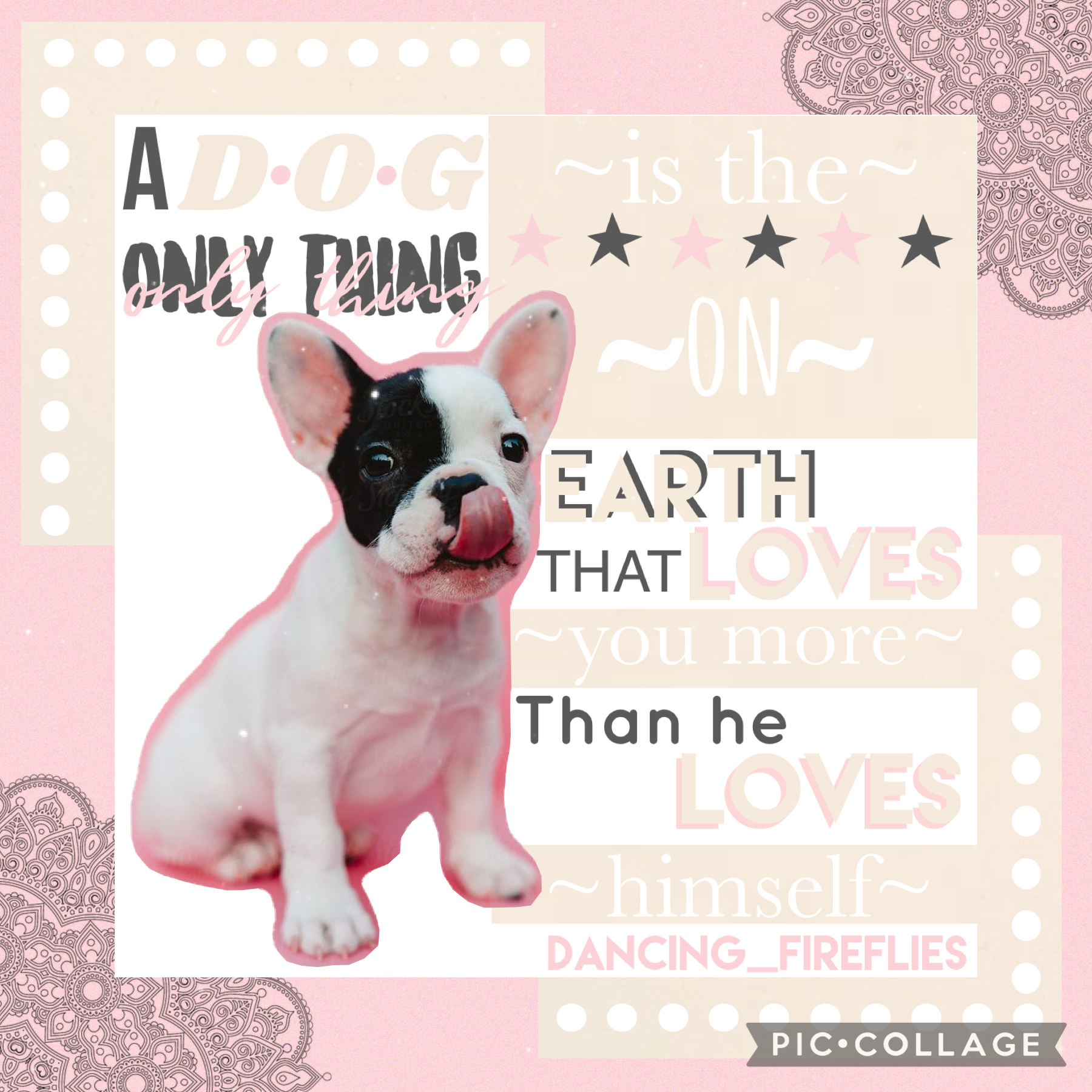 💖TAP💖 I love this quote so much and the little French is is so cute!🥰 from 1/10 how much do you rate the text? I personally don't like this style text but I want to know what you all think!💞(5/19/21)