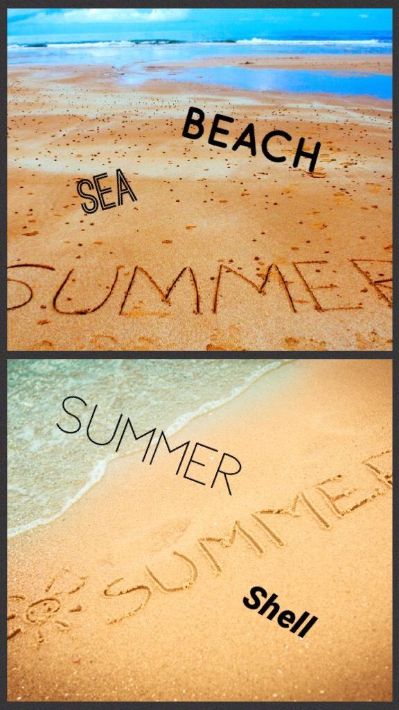 #beach#summer#shell#sea