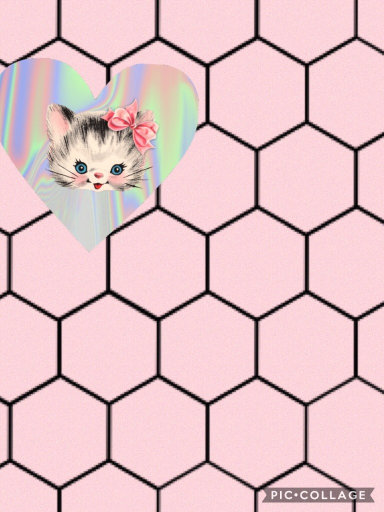 💕Tap Here💕 Hey guys here is a kitty cat collage hope you like it🐱